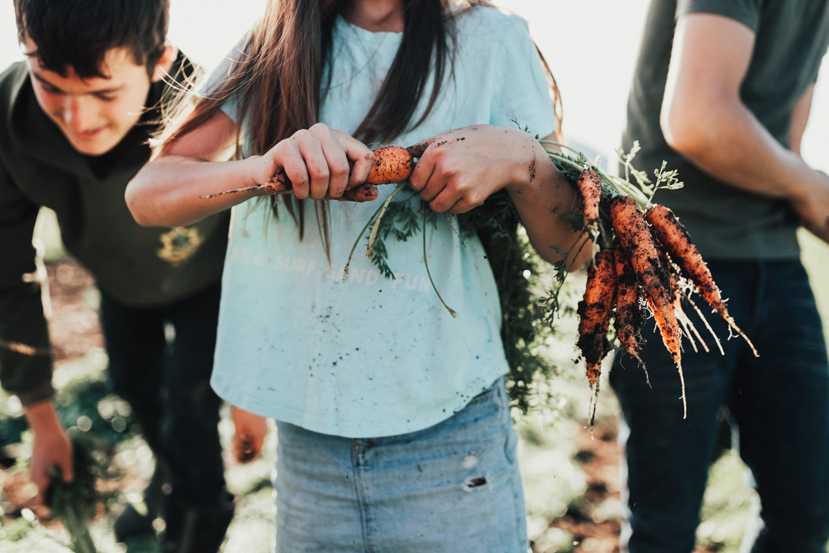 In The Fields of Local Harvest — The Fraser Valley