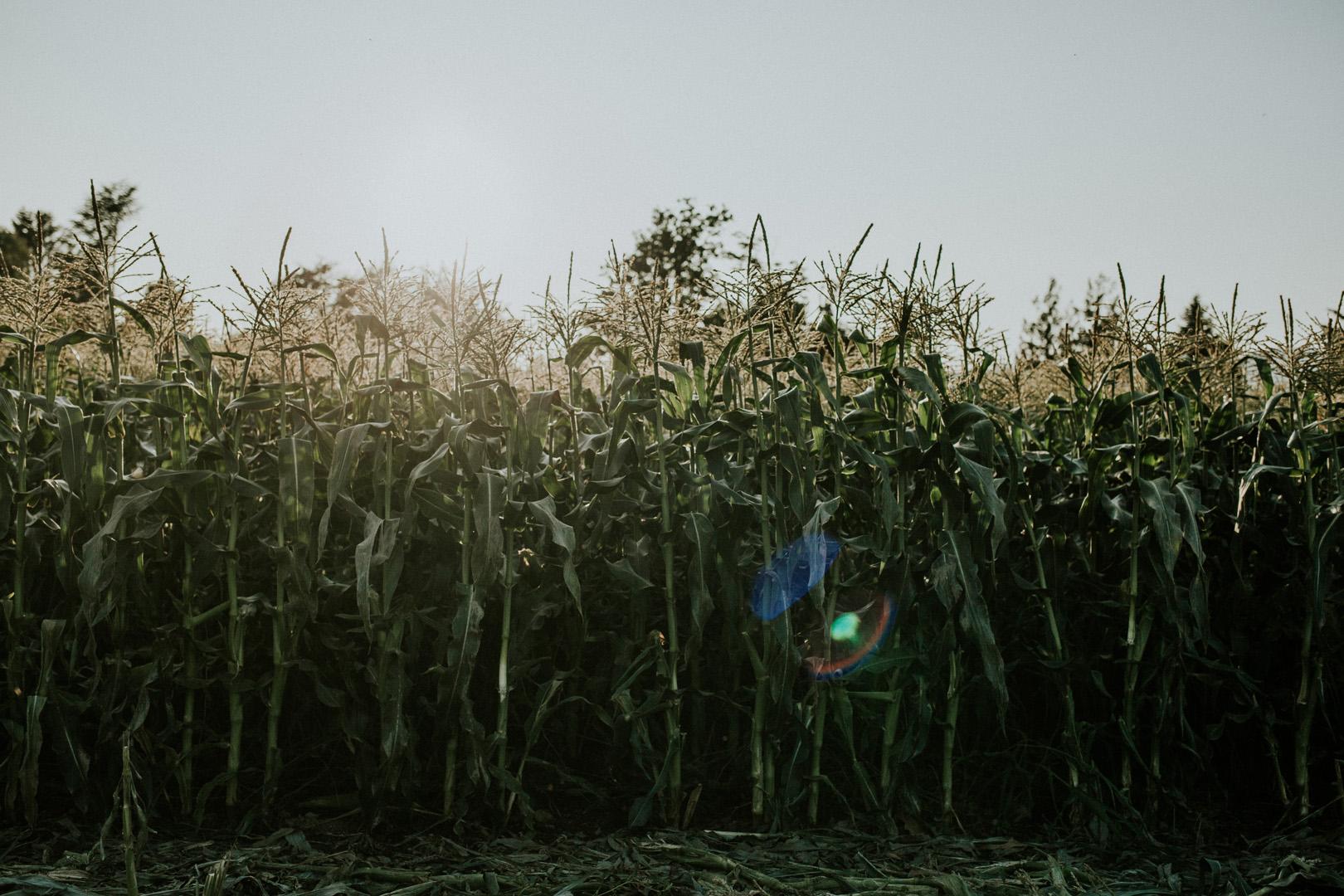 robyn-bessenger-photography-75.jpg