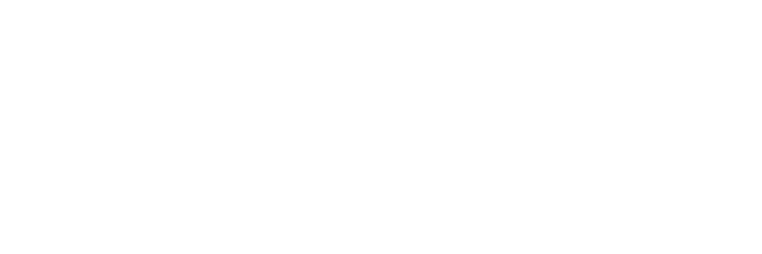 MWM 3x1 Logo - White on Trans copy.png