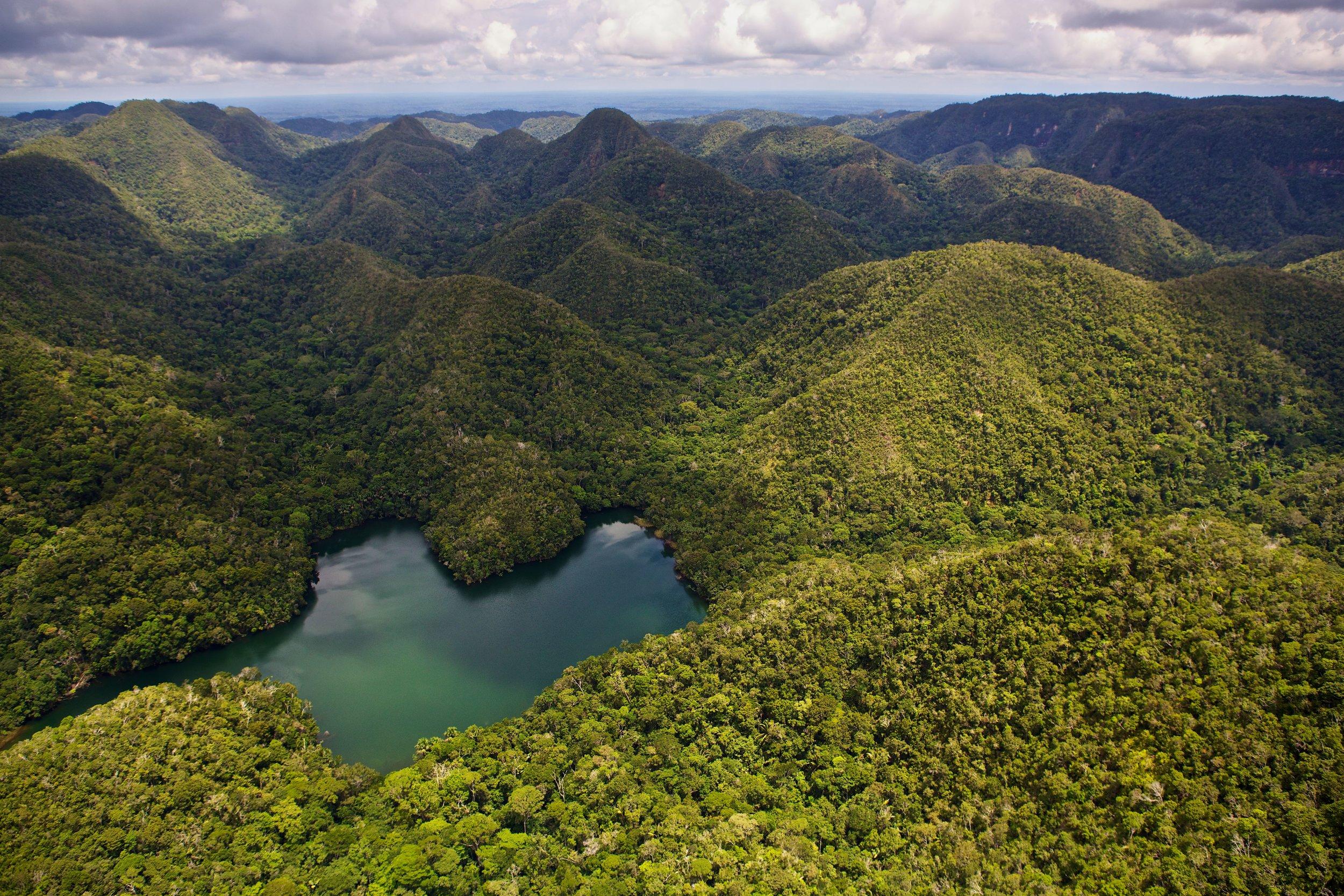 The Amazion Rainforest; Photo Credit: CEDIA