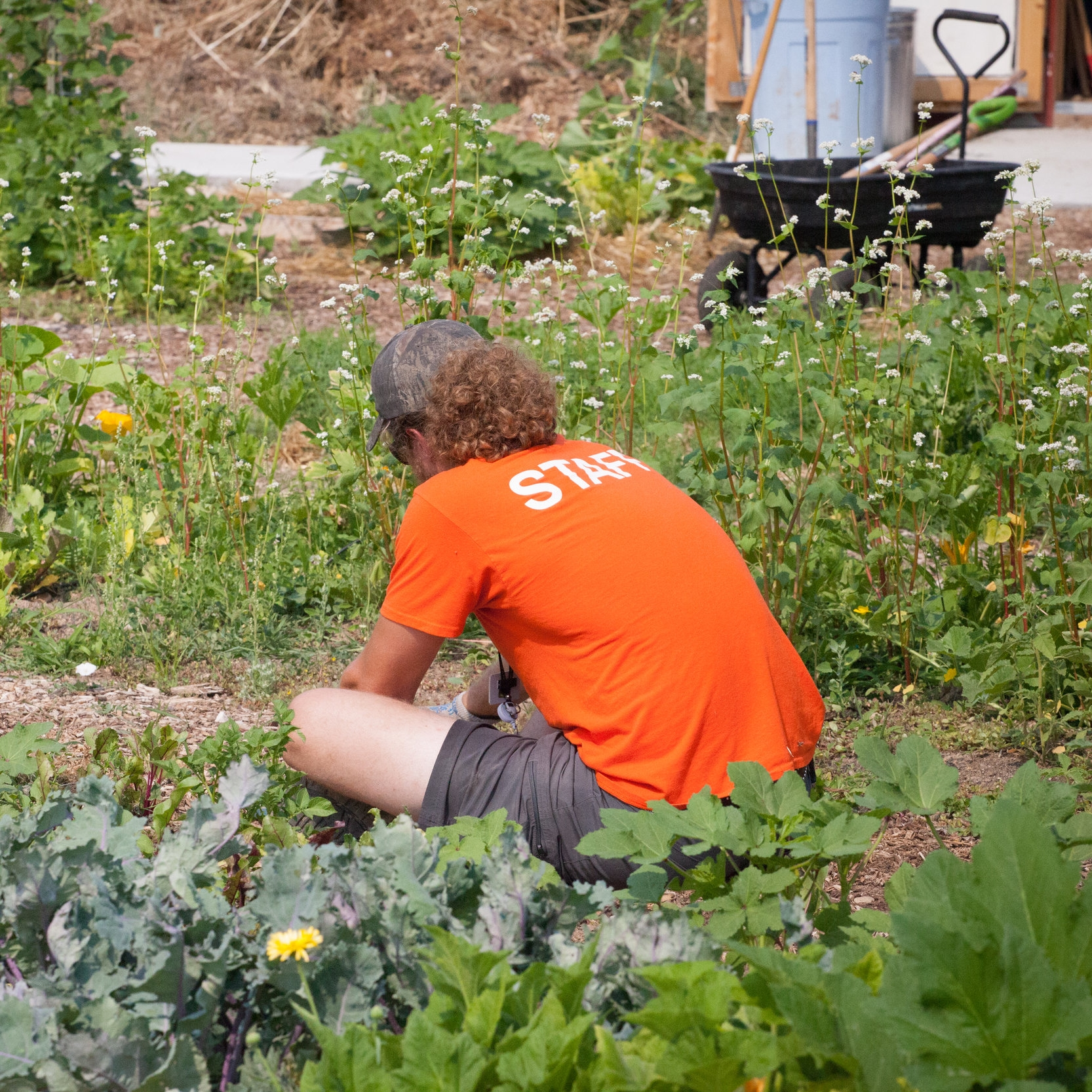 David Thompson,Urban Agriculture Specialist -