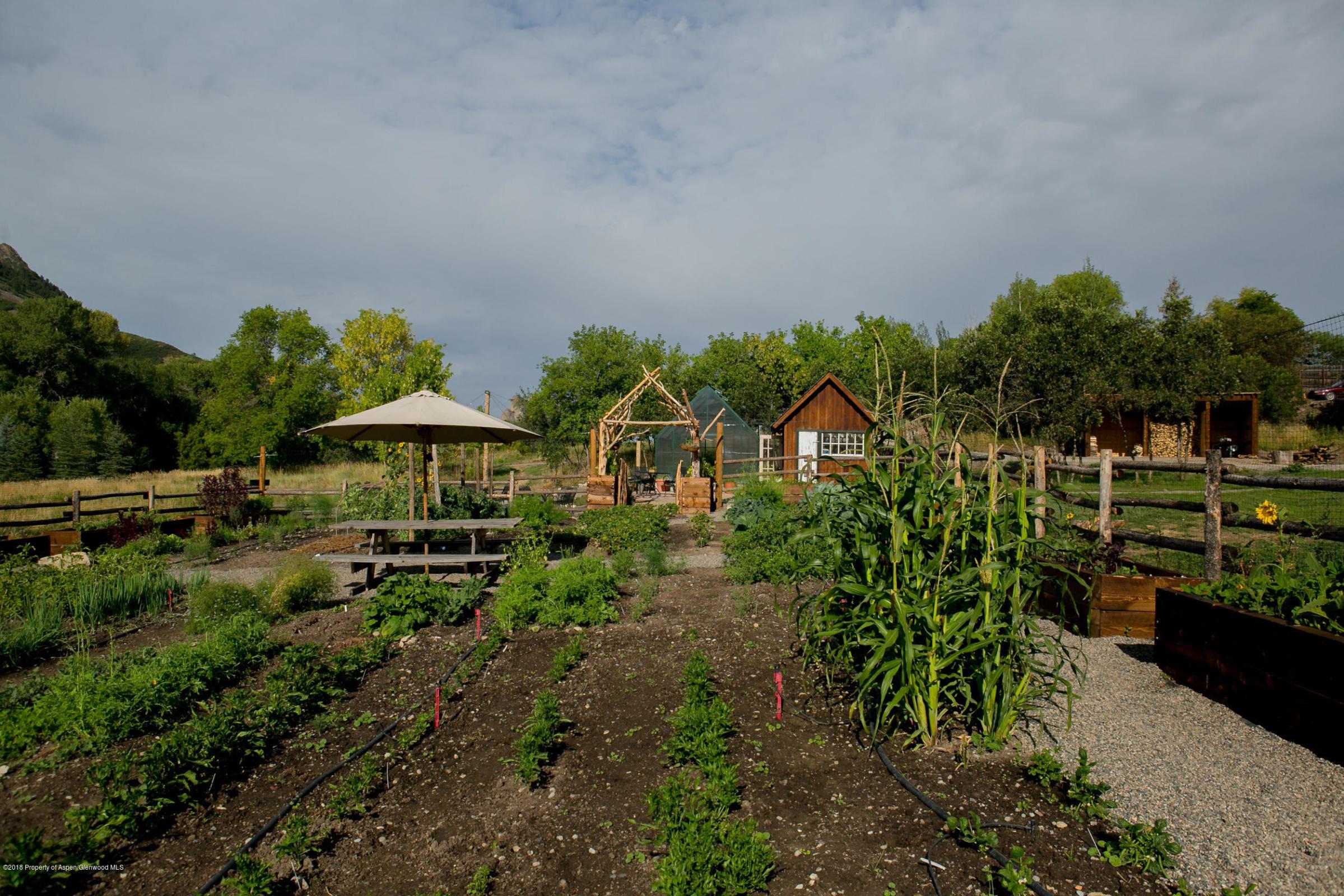 Most Fertile Soil Grows the Best Food