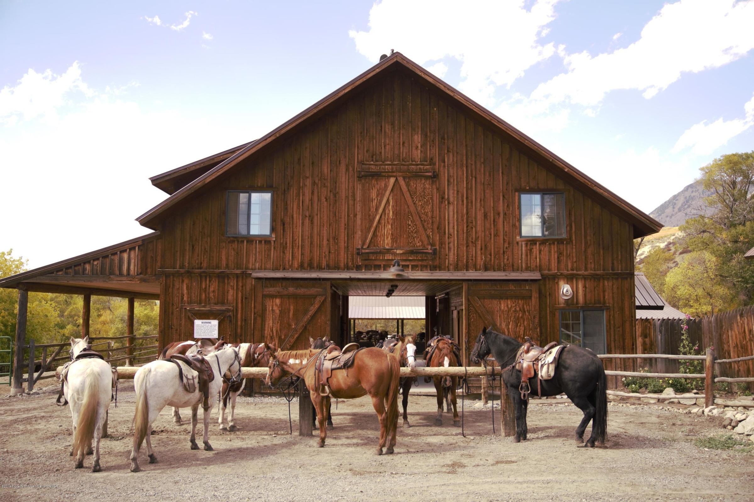 Proud Horses at the Tack Barn