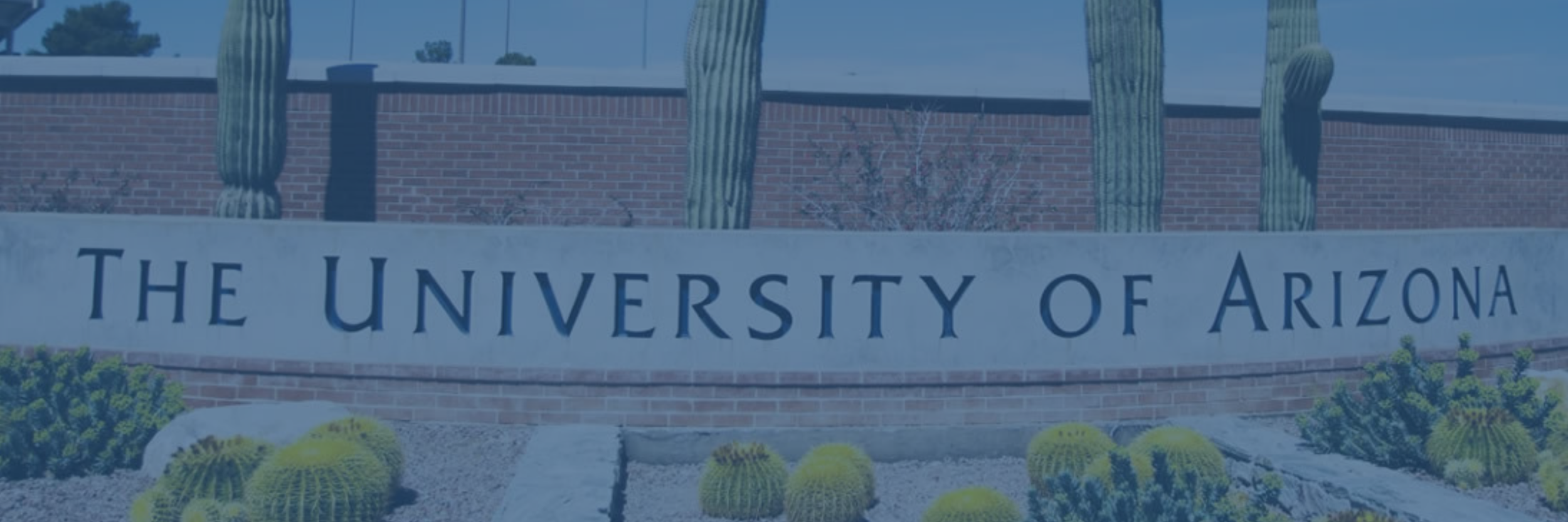 LUNCH & LEARN: MENTORSHIP AT ARIZONA CALS - APRIL 9, 2019