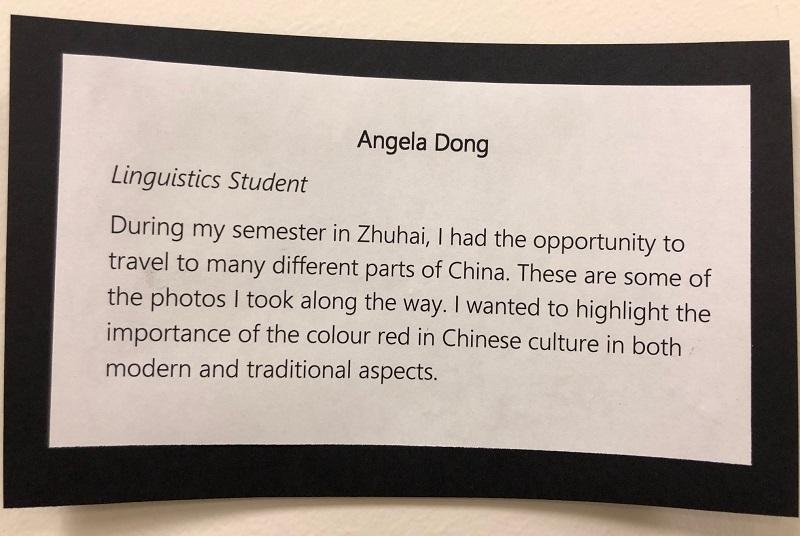 AngelaDong art description.jpg