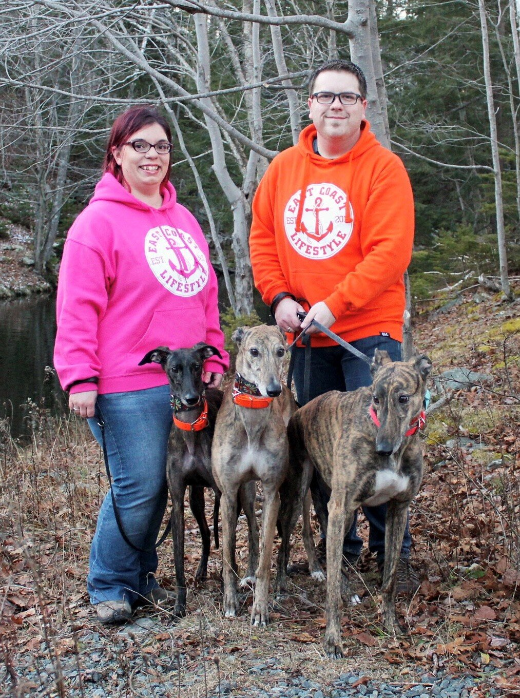 Higgins with her husband Sean and their greyhounds Harold, Angel and Terrance.