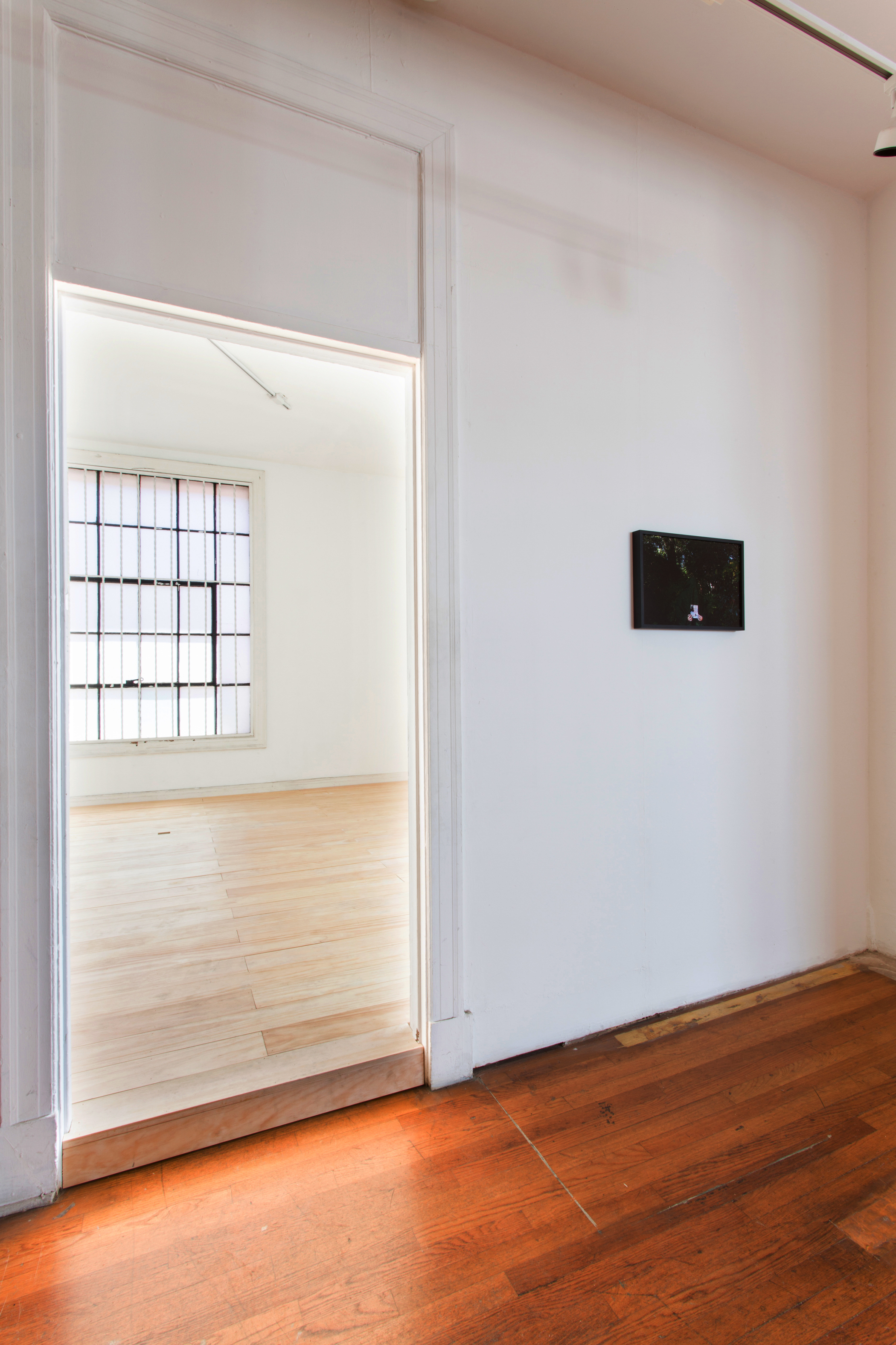Still Beneath the Surface (installation view)