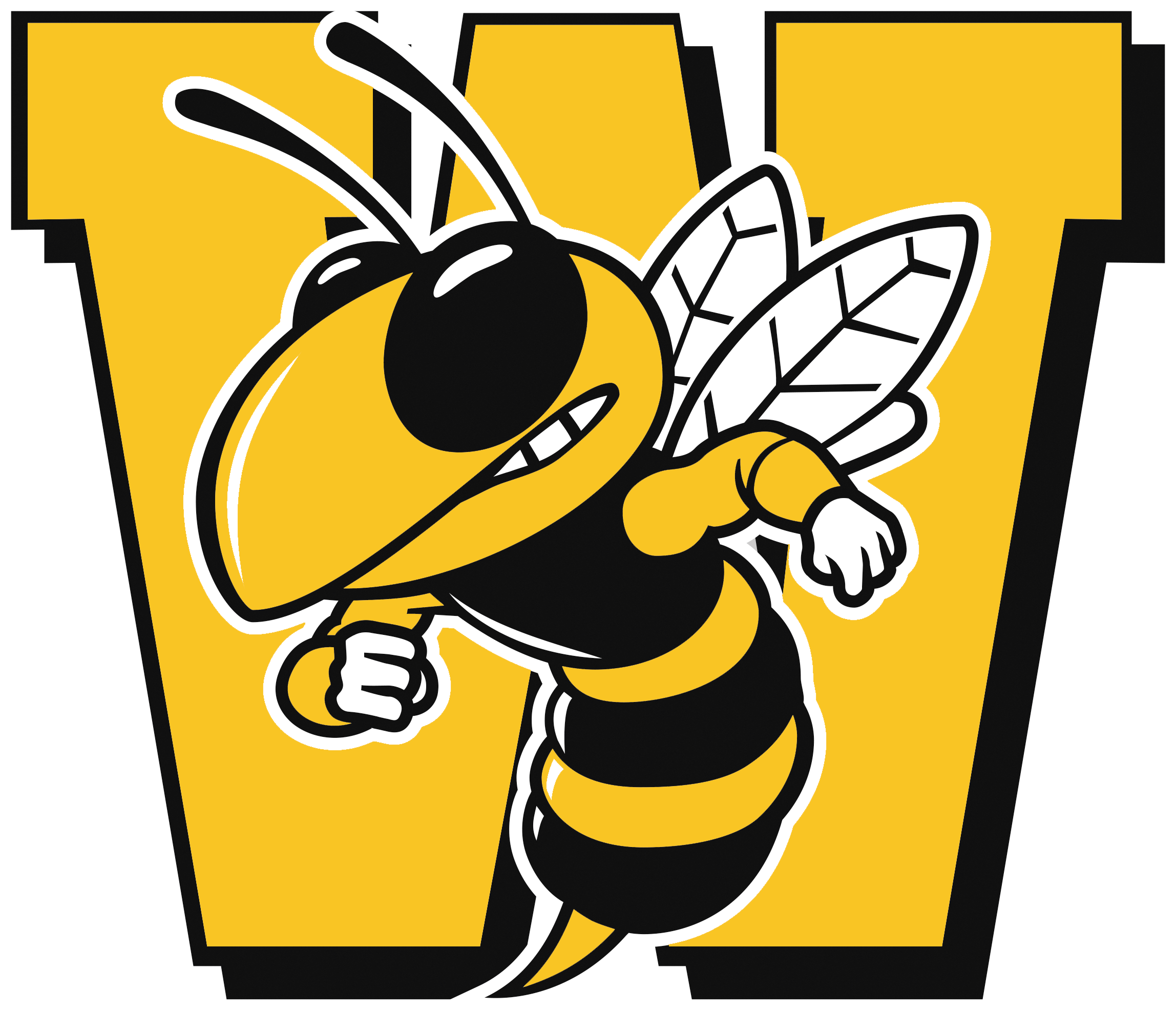 Wasatch Wasps  Club Captain: Alex Goates - 435-503-5472  Follow the Wasatch Spikeball Instagram  @wasatchspikeball