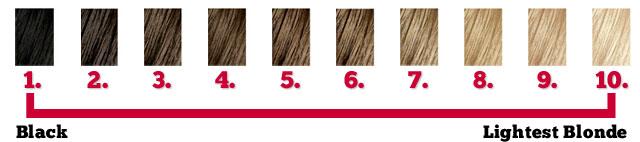 hair-color-levels.jpg