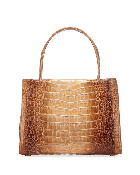 nancy gonzalez crocodile bag.jpg