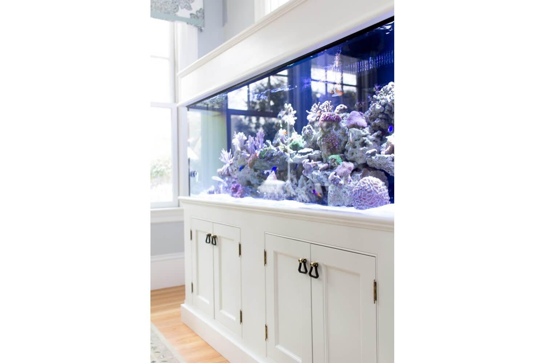 K_Kitchen_FishTank_1.jpg