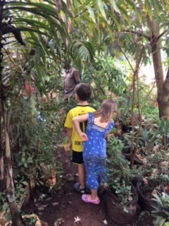 """Science trip to the """"nursery"""" with Uncle Adam (one of our friends and family mentors here who loves plants - see below)."""