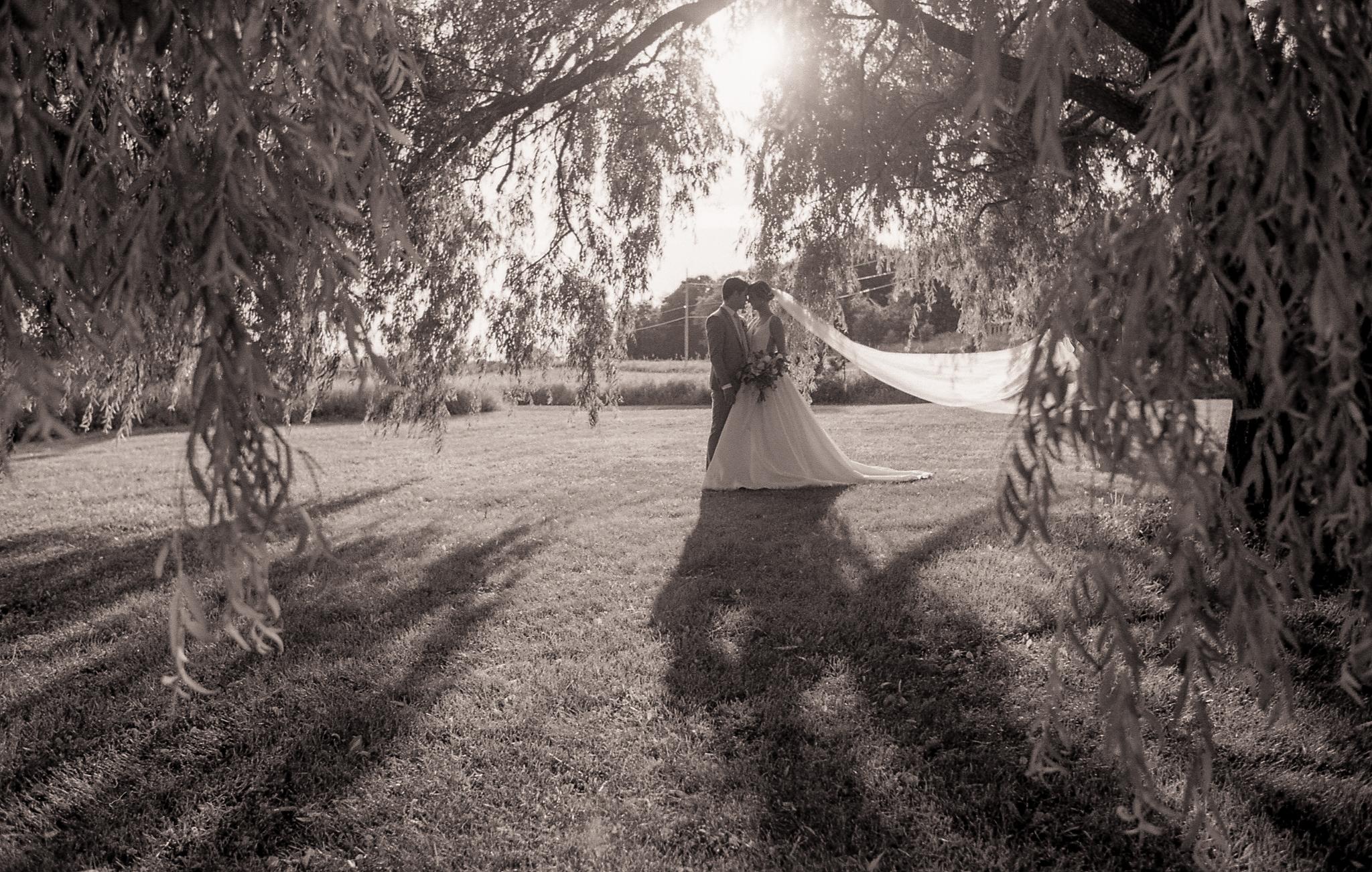 Classic Bridal (8)-2.jpg