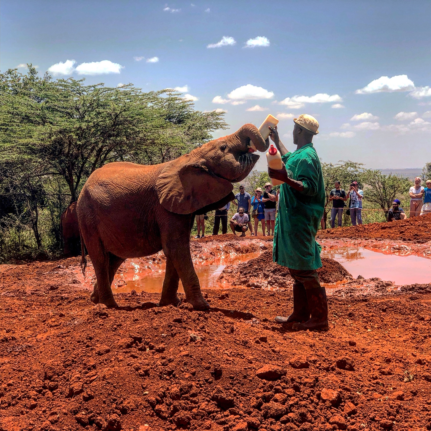 Before returning home, we stopped by the Elephant Orphanage and a few other places in Nairobi!