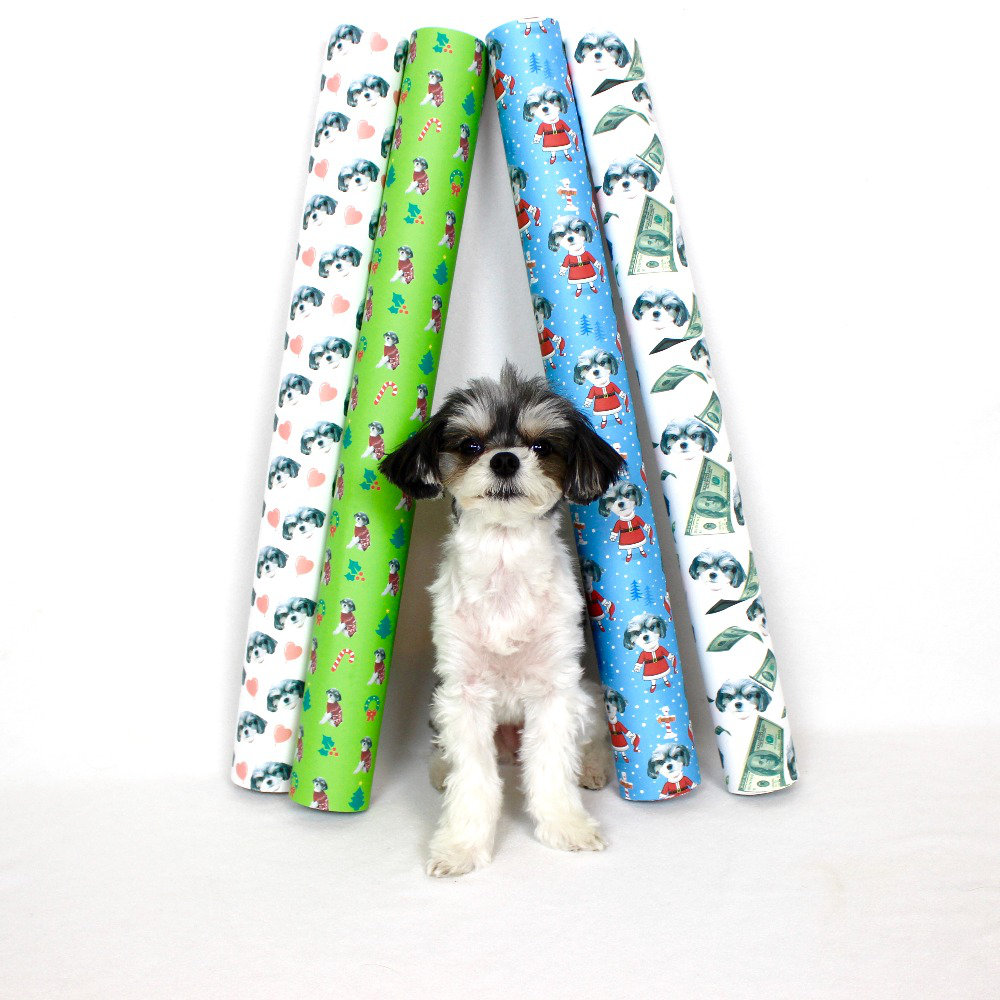 "1. gIFT WRAP MY FACE (CUSTOM SELFIE GIFT WRAPPING PAPER) - ($9.95 - $16.95)          TINKERBELLE: ""PUT YOUR FAVORITE PERSON OR POOCH ON YOUR WRAPPING PAPER"""