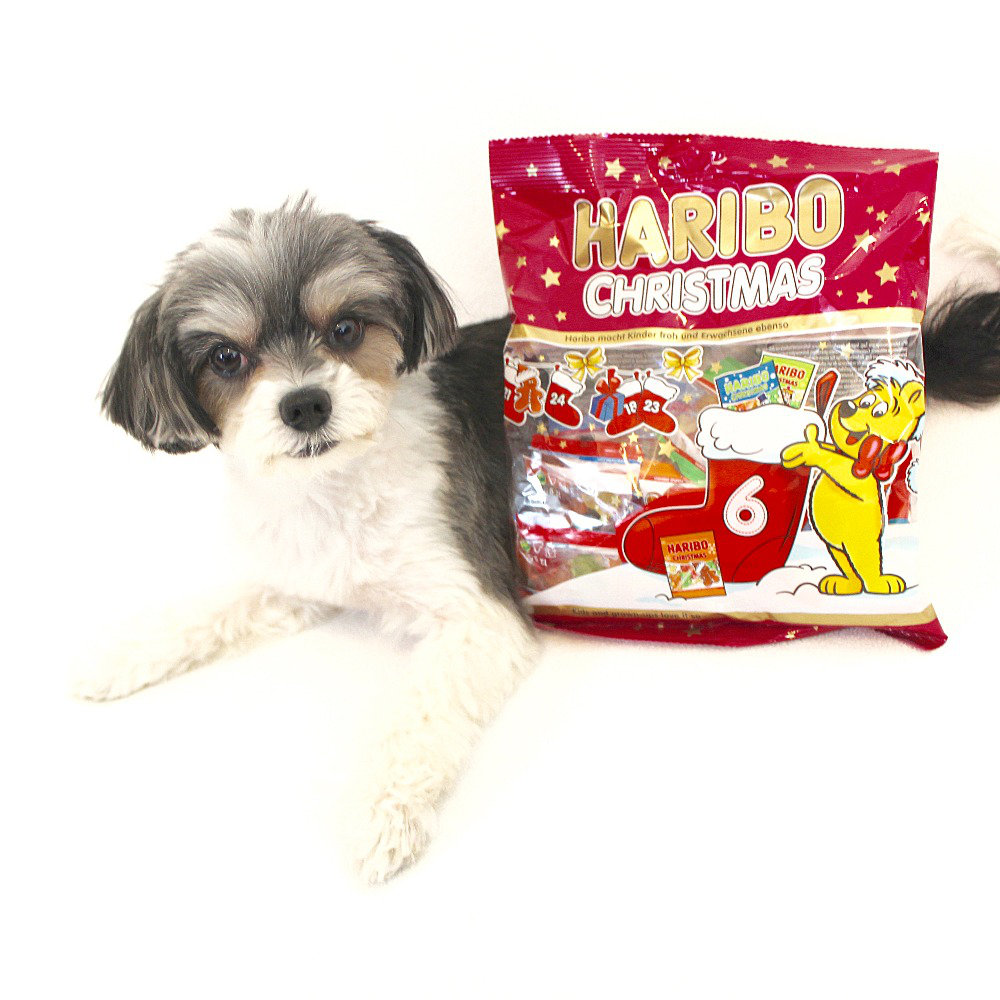 "haribo christmas gummis - ($6.00)  tinkerbelle: ""why settle for ordinary gummi bears when you can have delicious adorable christmas shaped gummis!"""