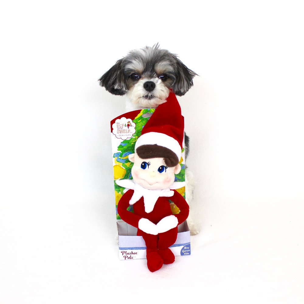 """elf on the shelf plushee - ($12.95)  tinkerbelle: """"cuddle up by the fireplace with your elf on the shelf plushee"""""""