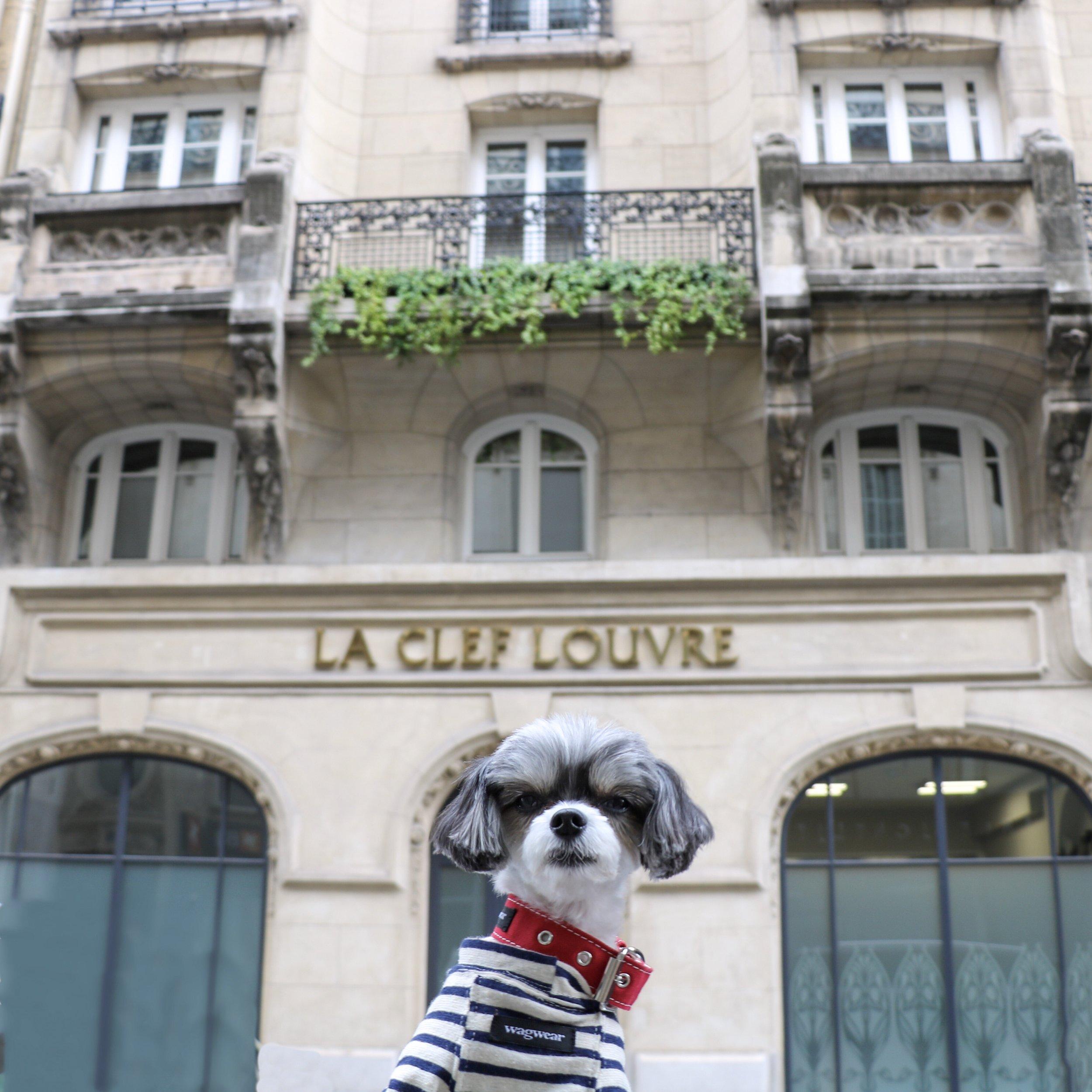 Tinkerbelle outside the La Clef Louvre Paris Hotel