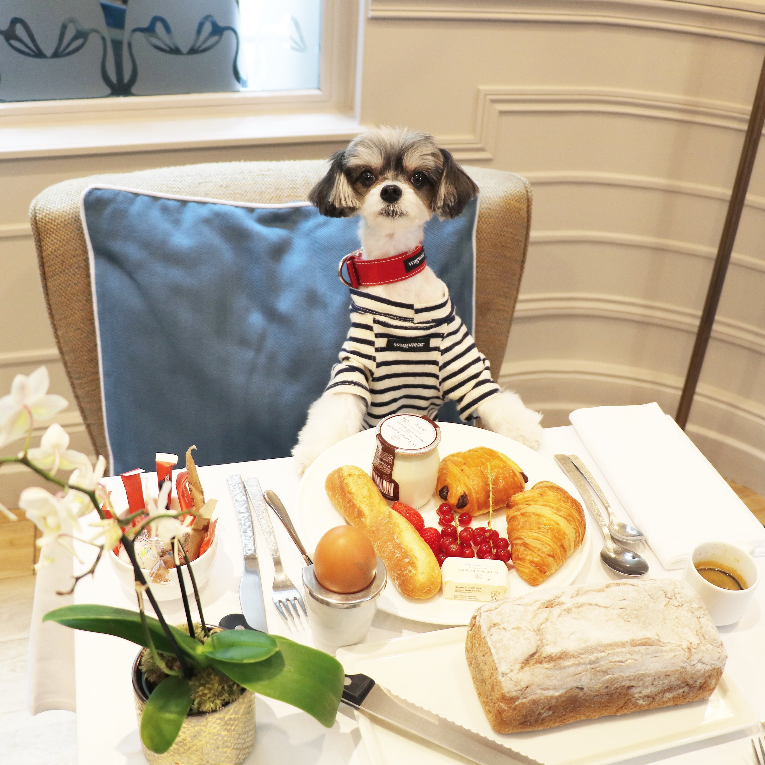 Breakfast at La Clef Louvre Paris