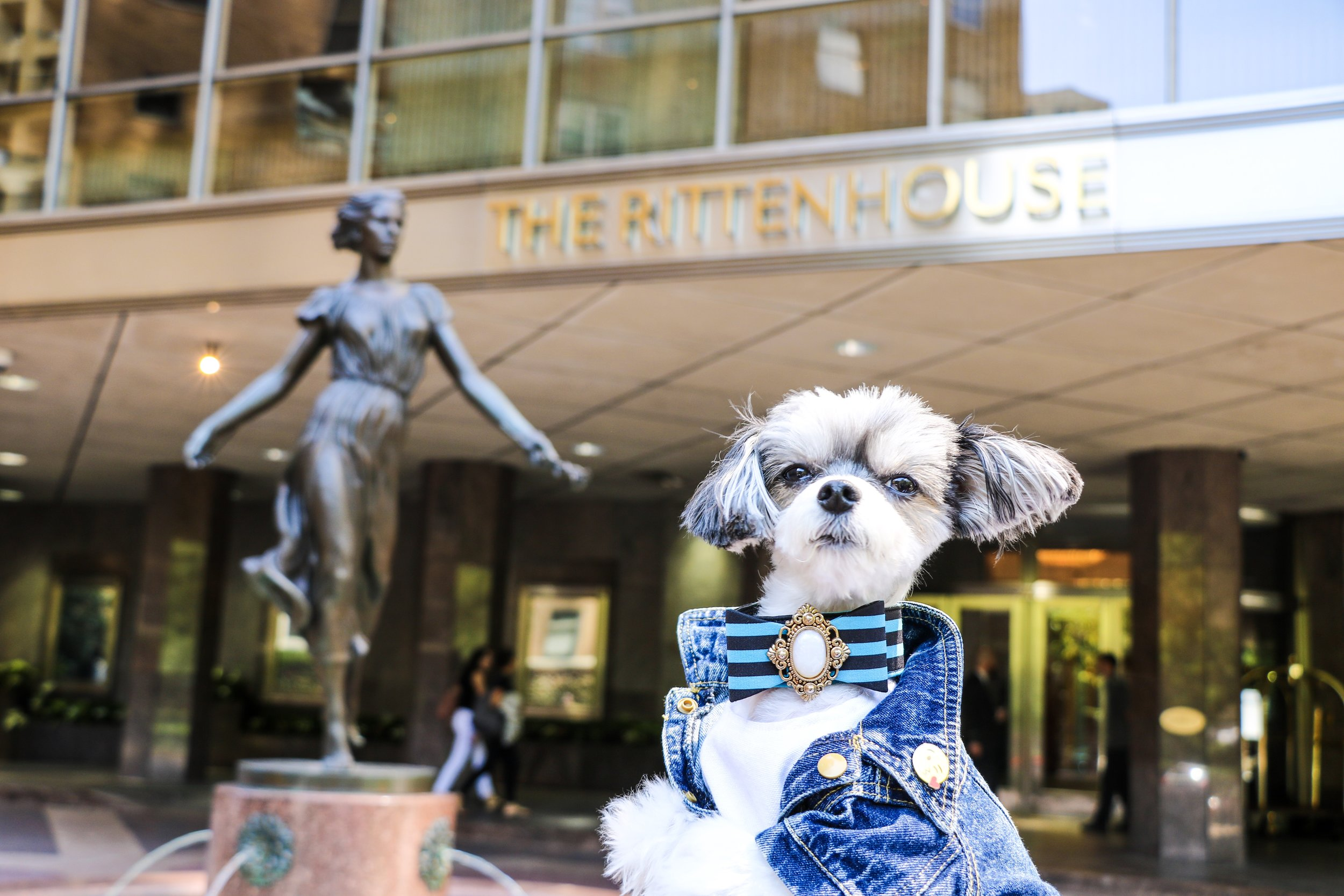 Tinkerbelle posting in front of The Rittenhouse.