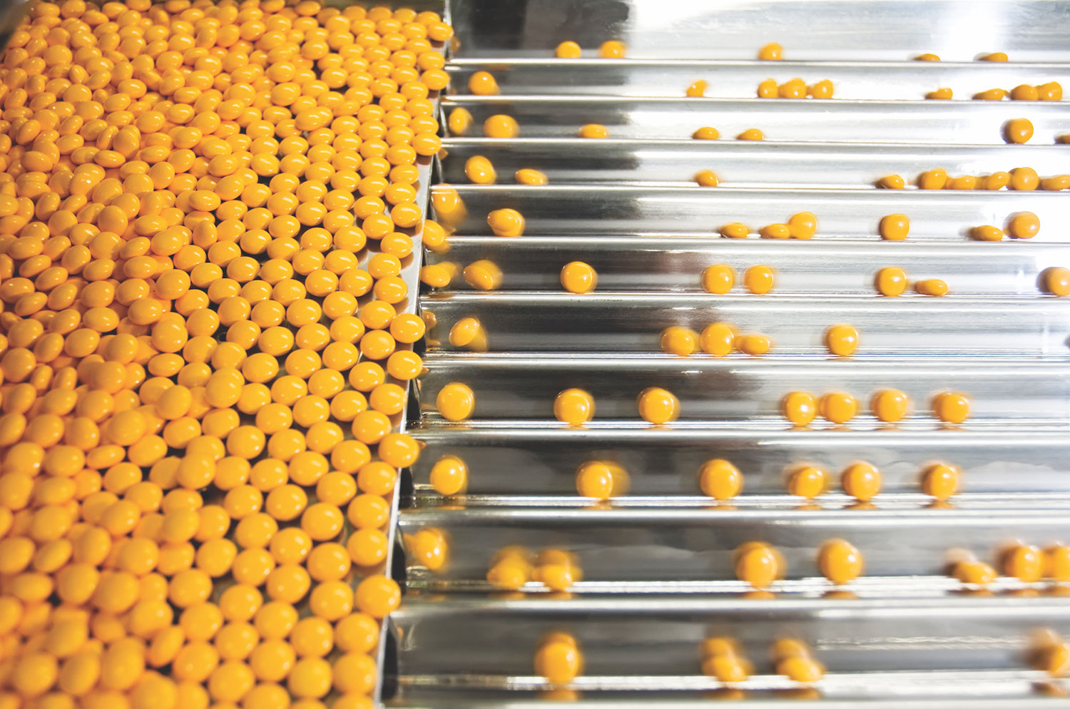 E55   Manufacture of Pharmaceutical and Biopharmaceutical Products