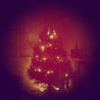 In the evening when our Christmas tree is lit will forever be my favorite.