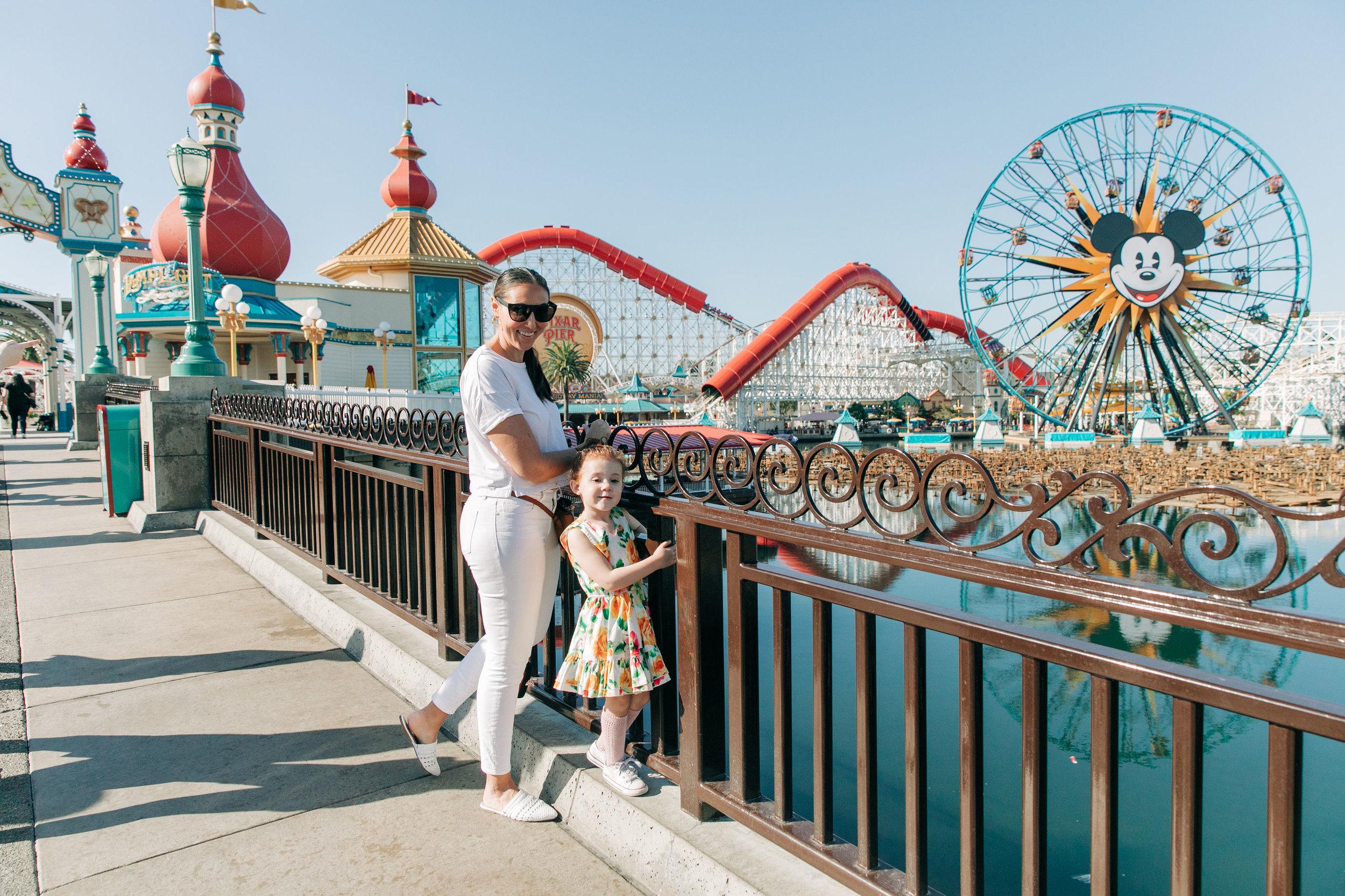 Disney_California_Adventure_LilyRoPhotography-34.jpg