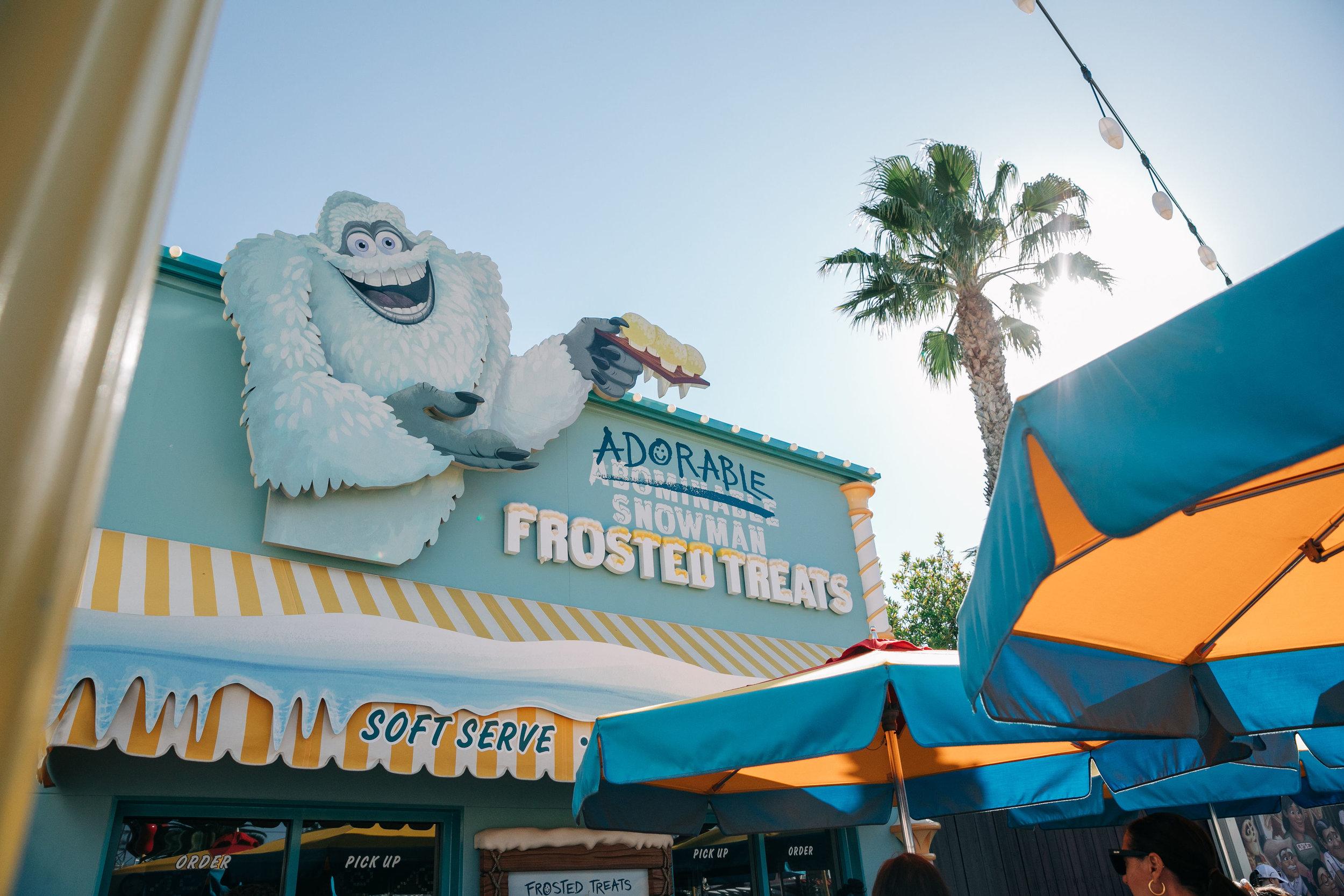 Disney_California_Adventure_LilyRoPhotography-37.jpg