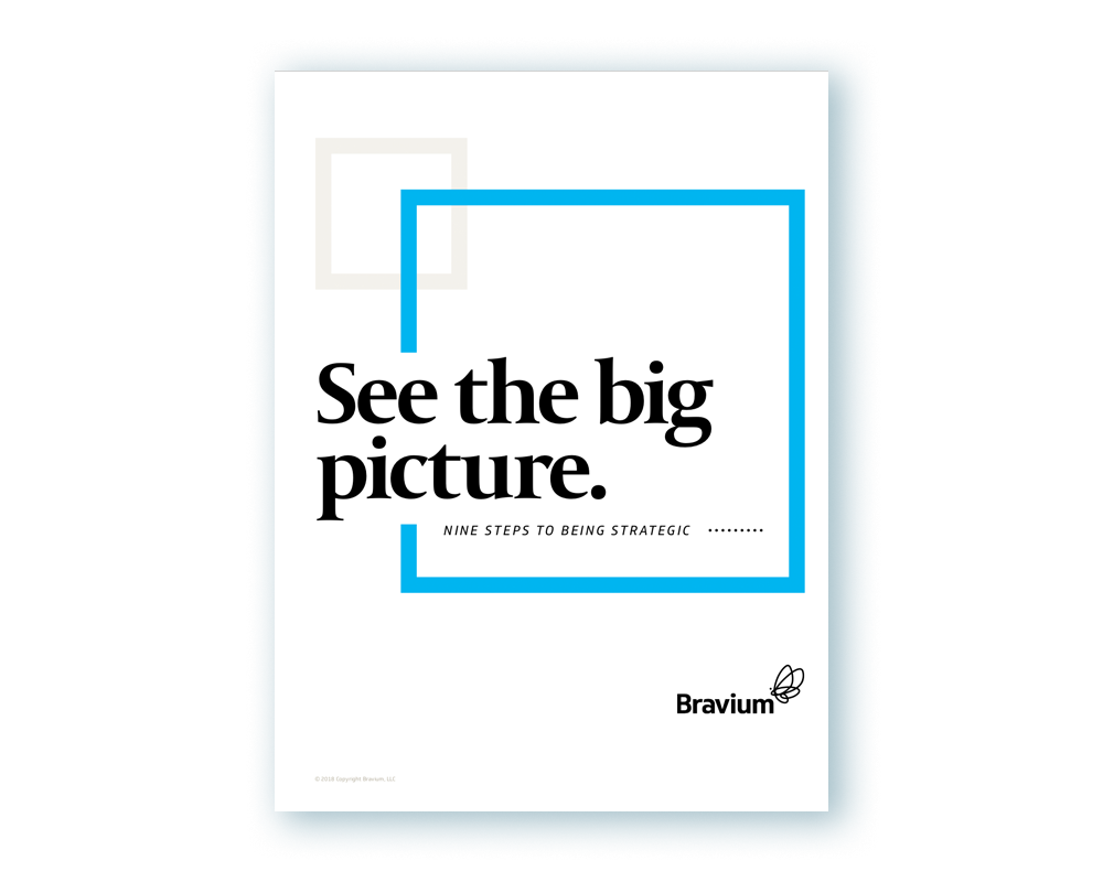 See the big picture. - Just imagine the impact you would have if you knew exactly how to be more strategic in everything you do and every decision you make. This simple guide is loaded with ideas to help you transform yourself and your company.