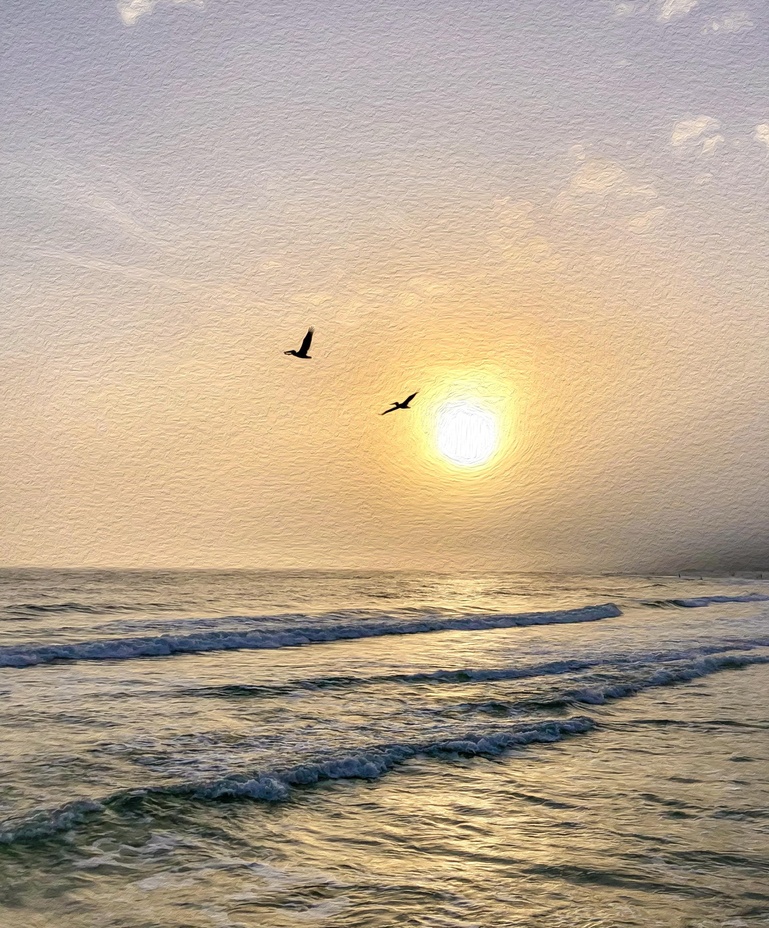 sunset_birds_mcb.png