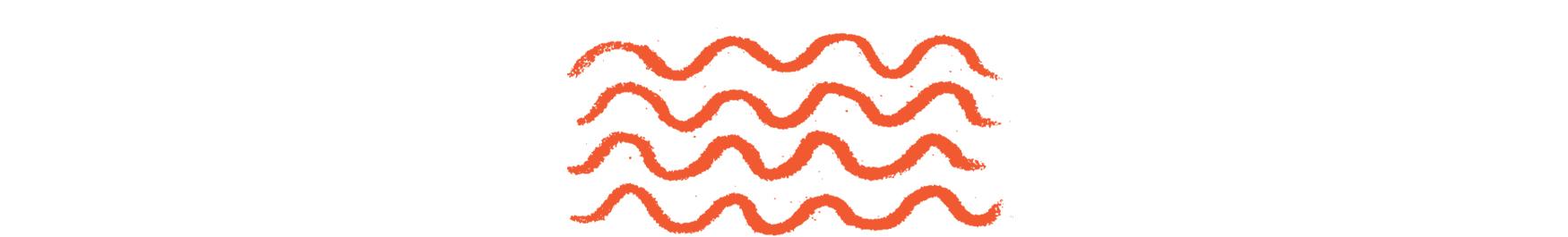 culinary-immersions-orange.jpg