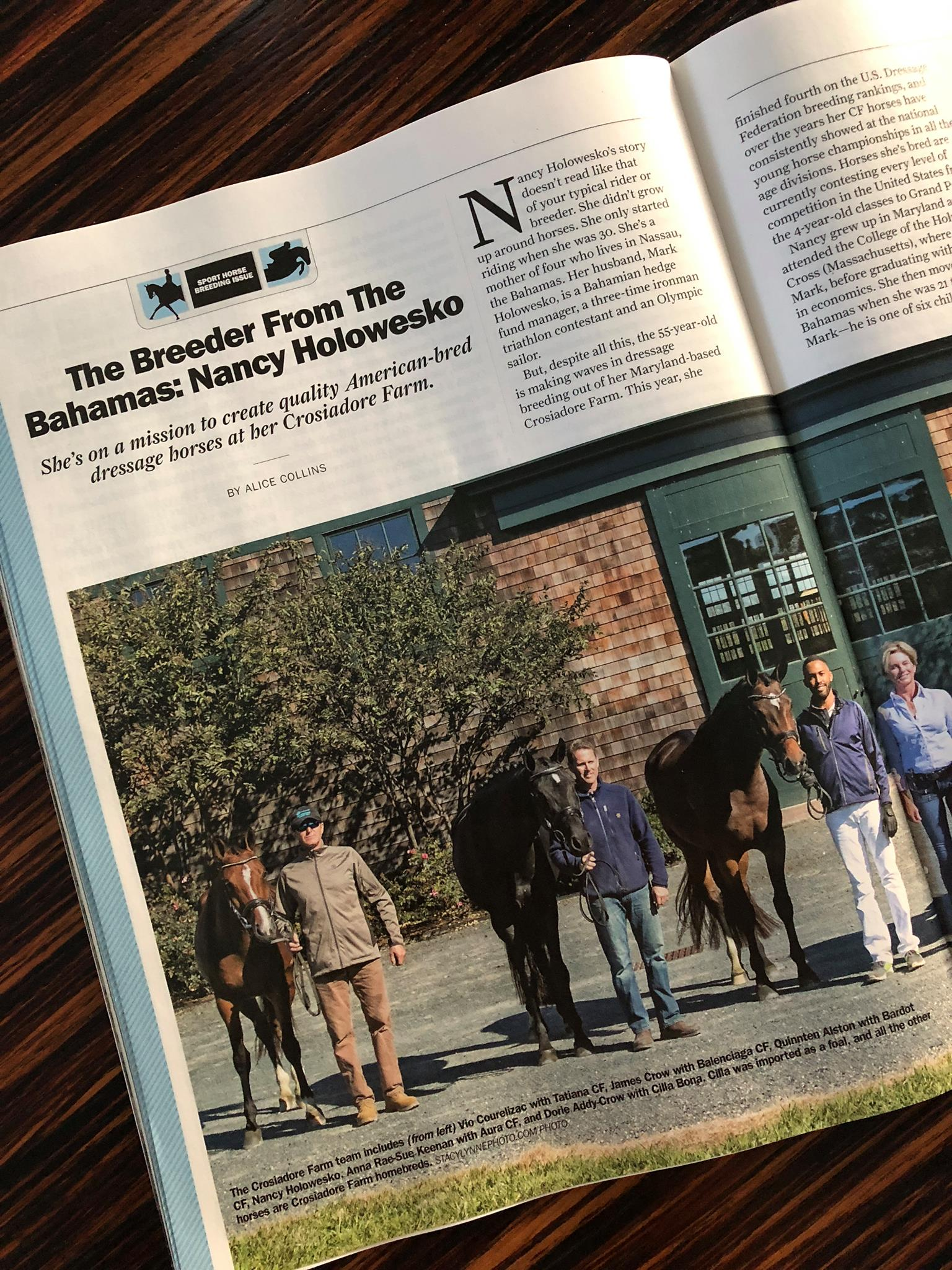 CHronicle of the horse - 2018 Article on our breeding programMore Information