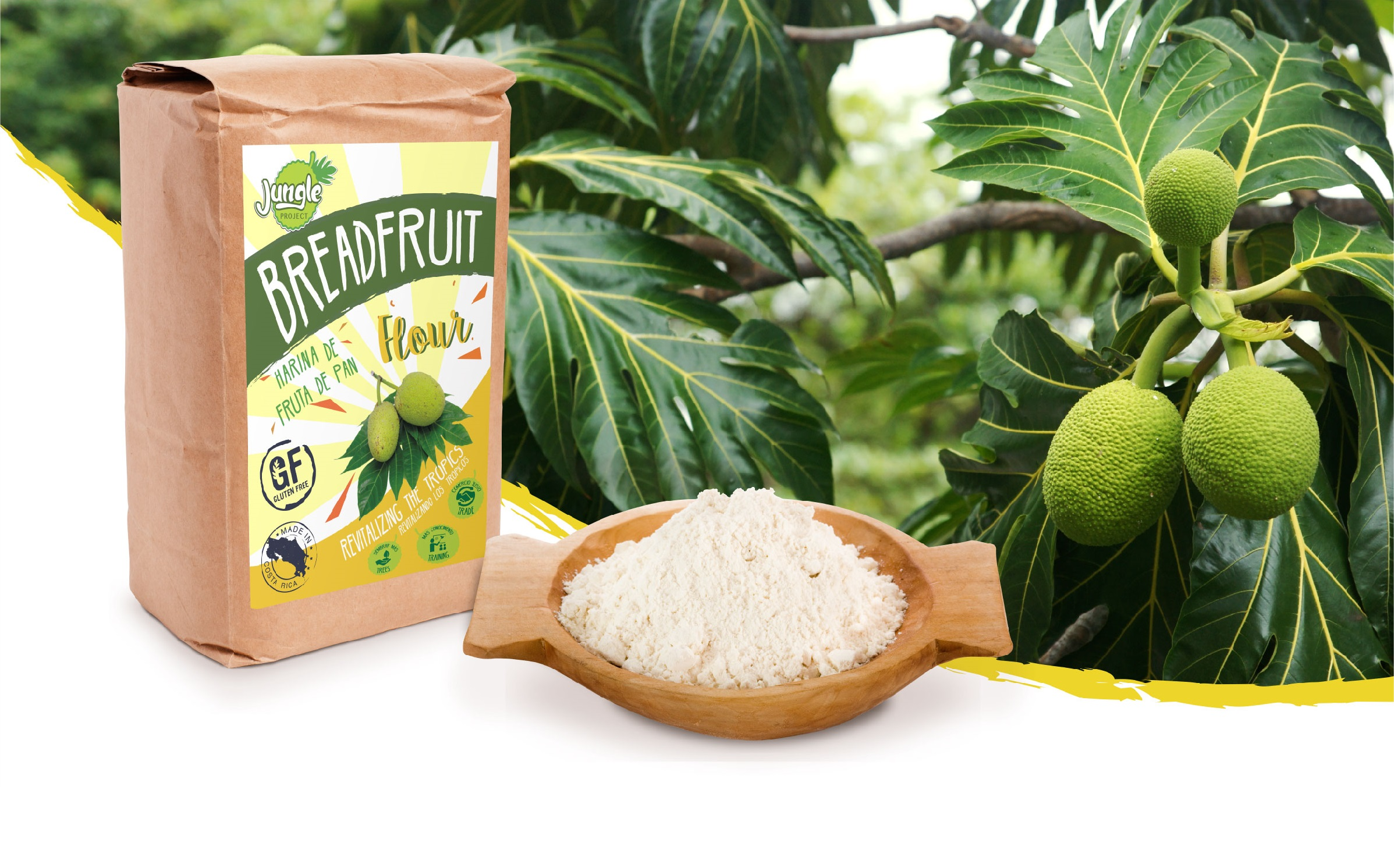 Meet BREADFRUIT -