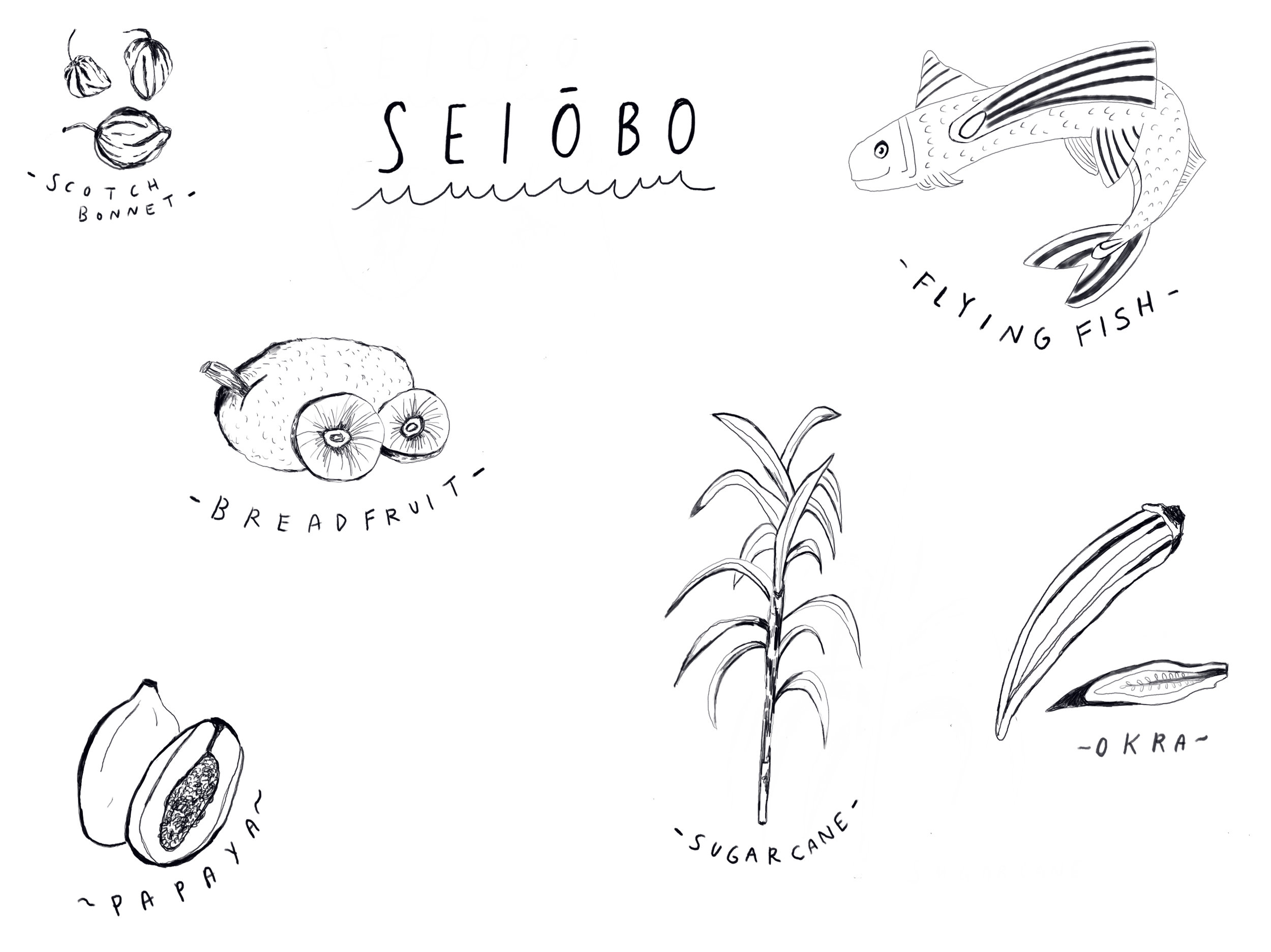 Seiobo illustrations.jpg
