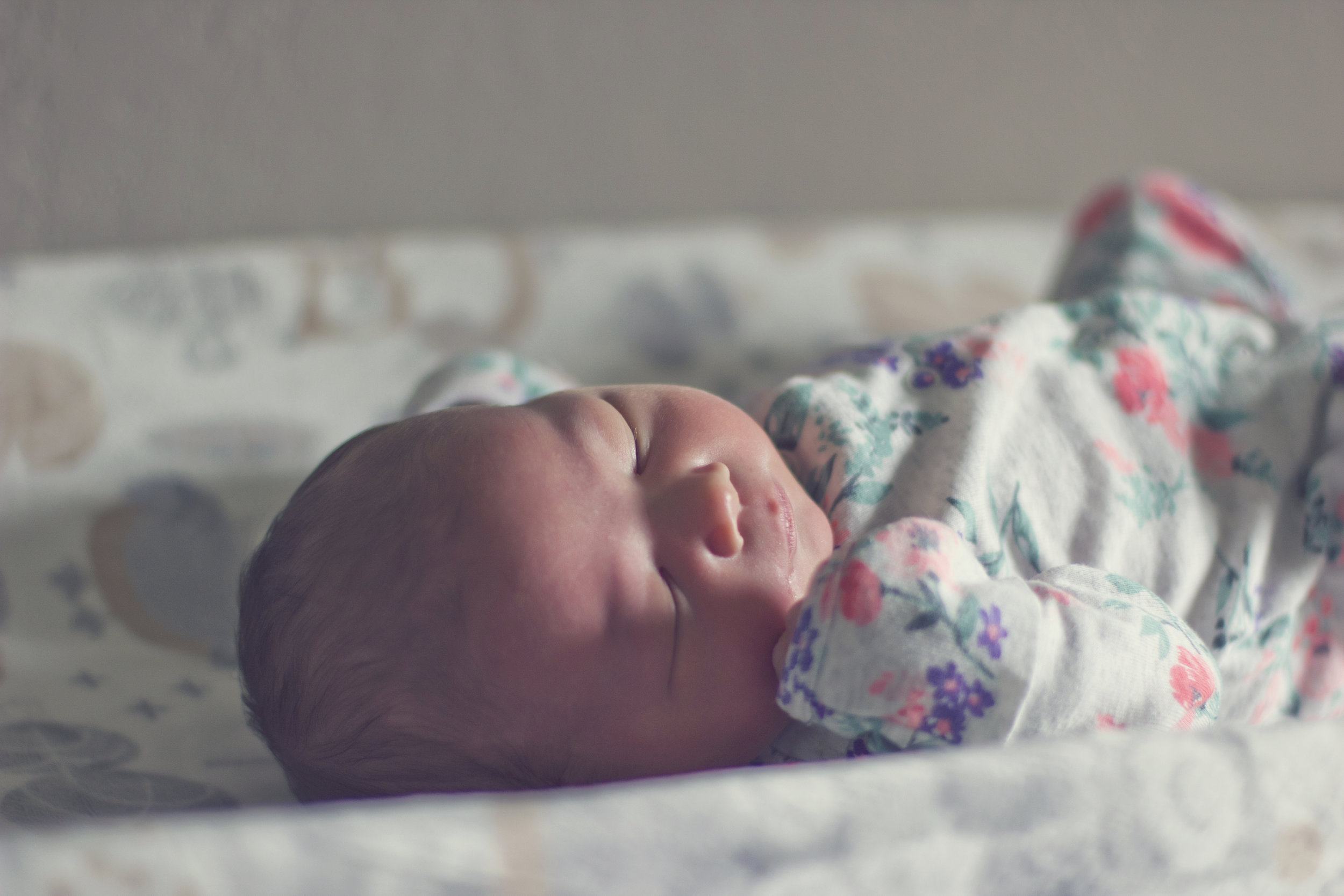 Newborn. Fresh 48