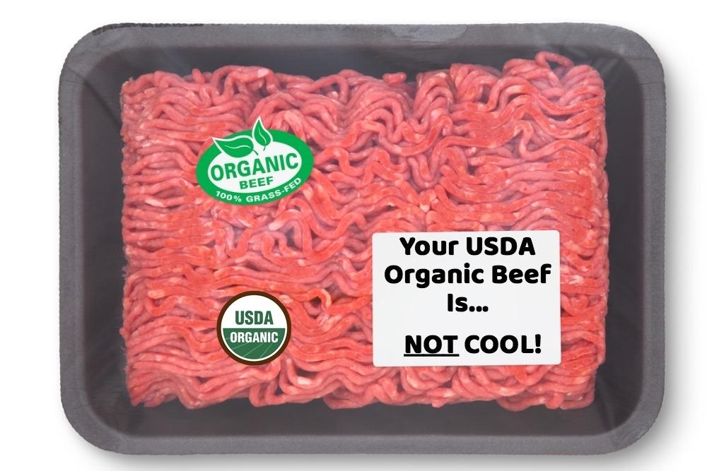 OrganicBeefNOTCOOL