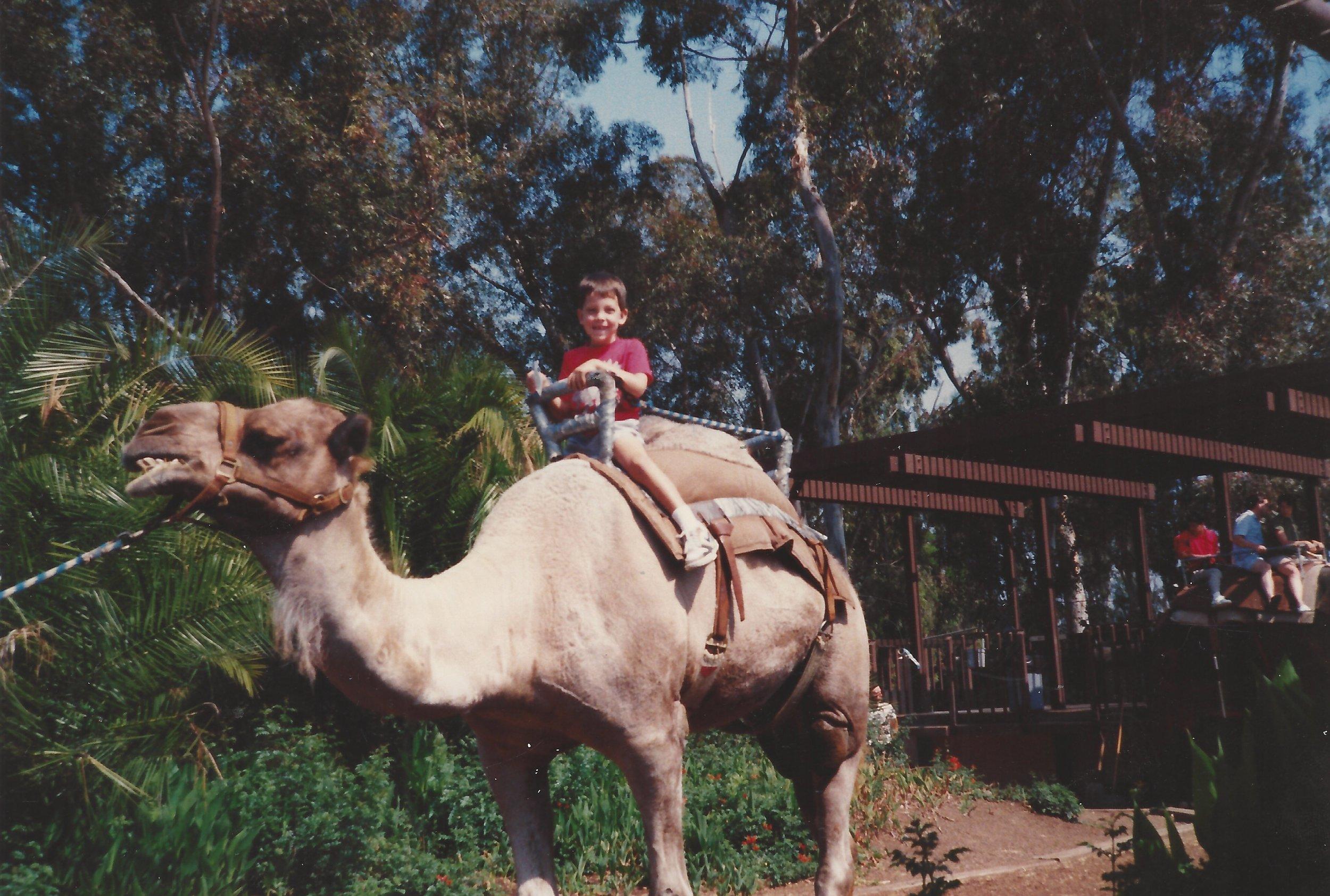 Kev-camel.jpg