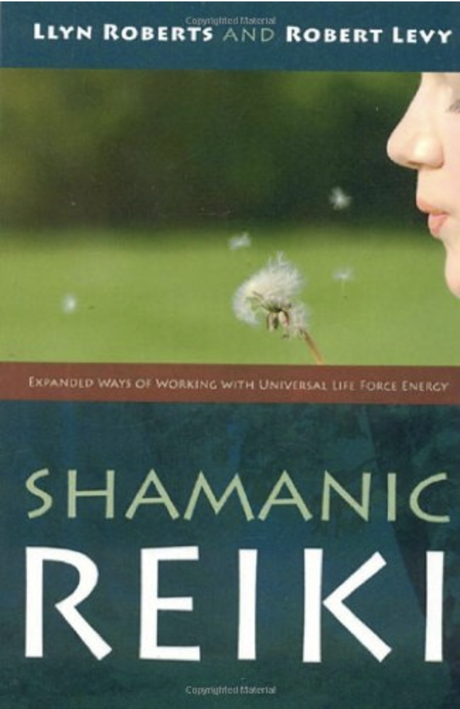 Shamanic Reiki: Expanded Ways of Working with Universal Life Force Energy - Lynn Roberts & Robert Levy