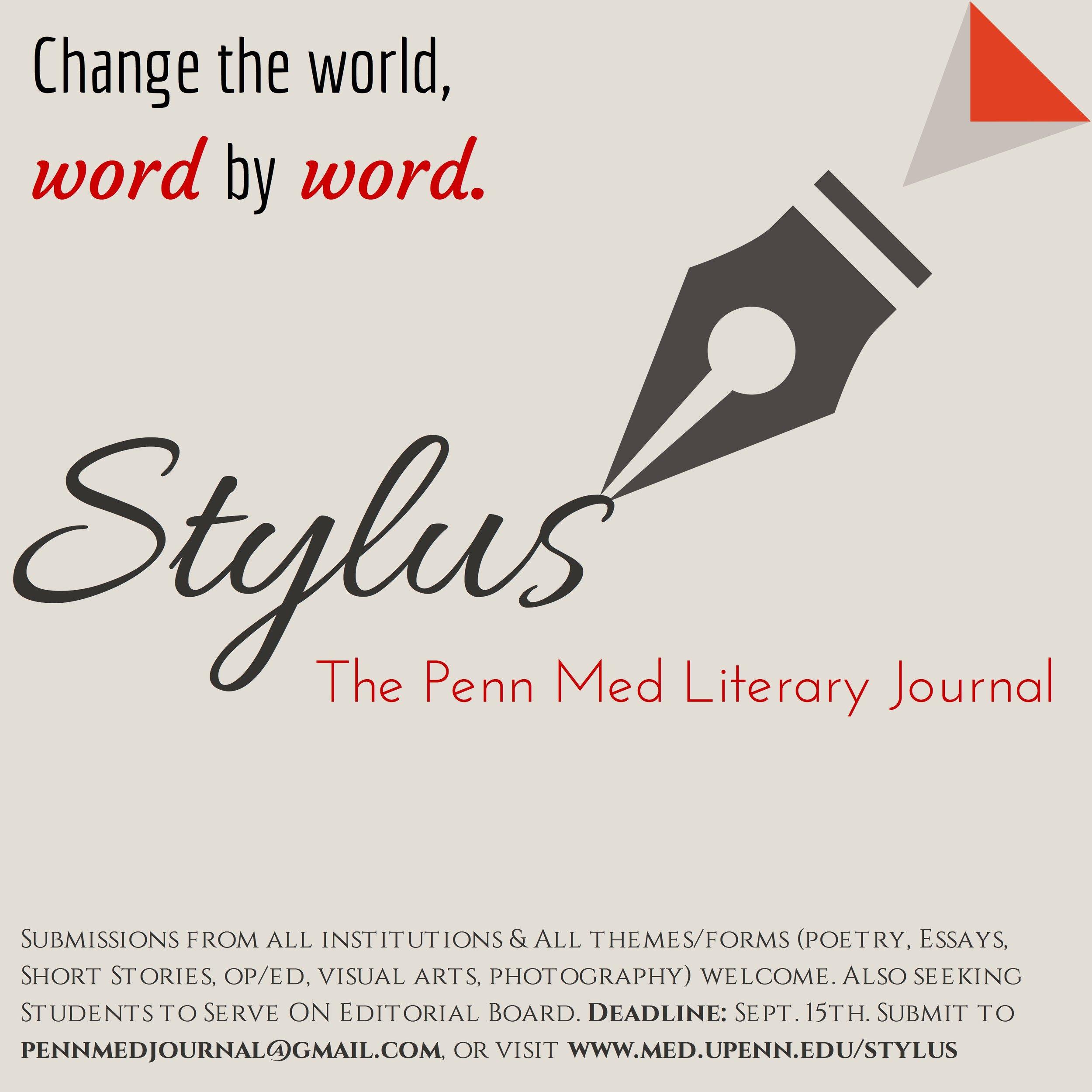 Stylus Flyer (VD)-3-40.jpg