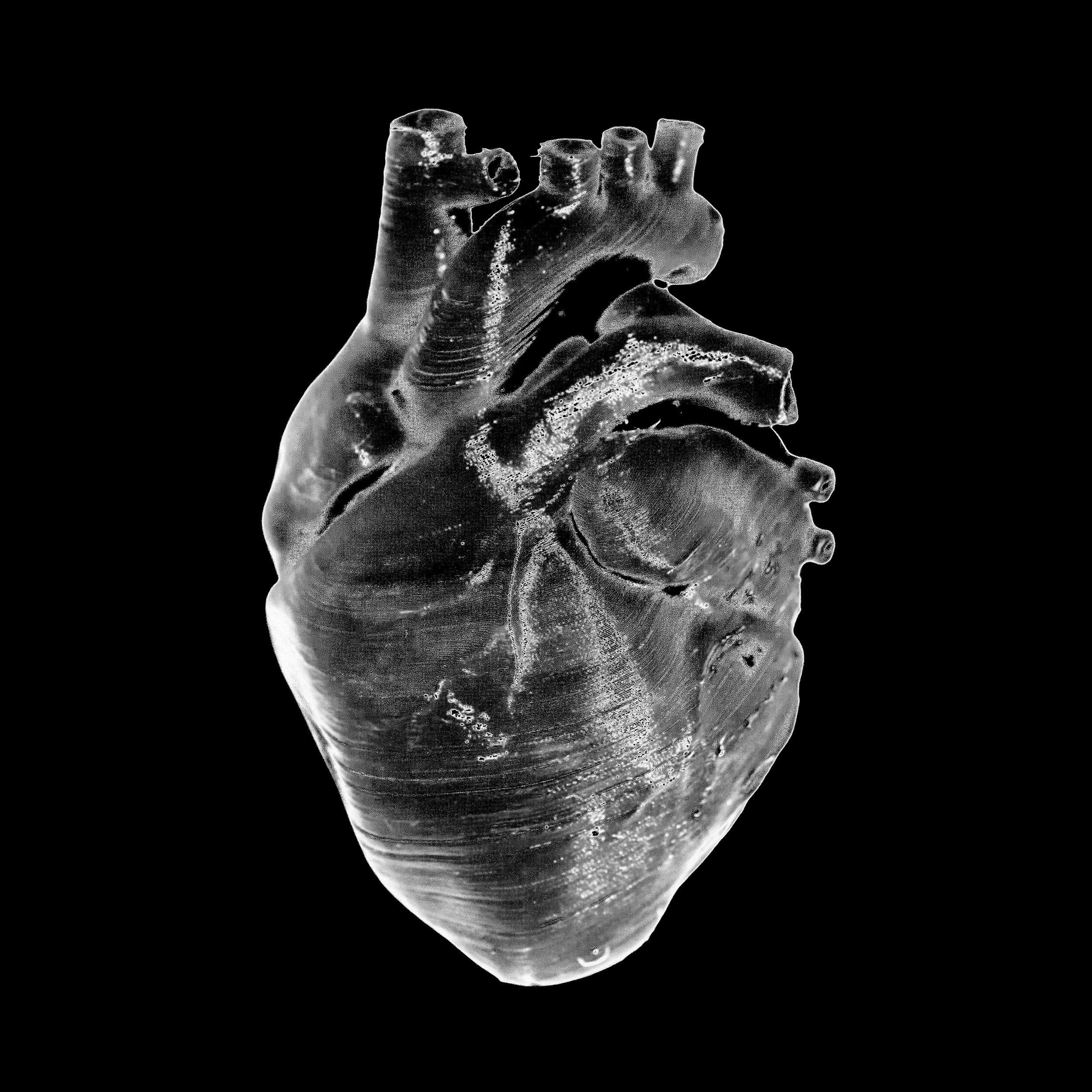 heart monochrome.JPG