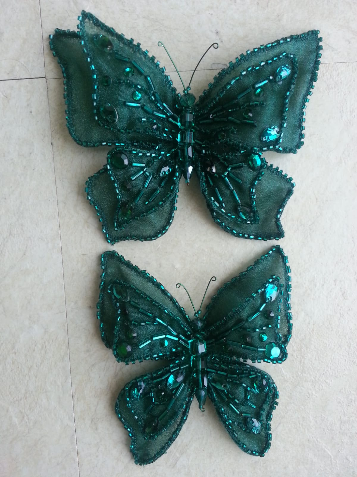 Butterfly detail.jpeg