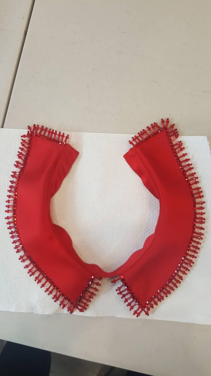 Red collar.jpeg