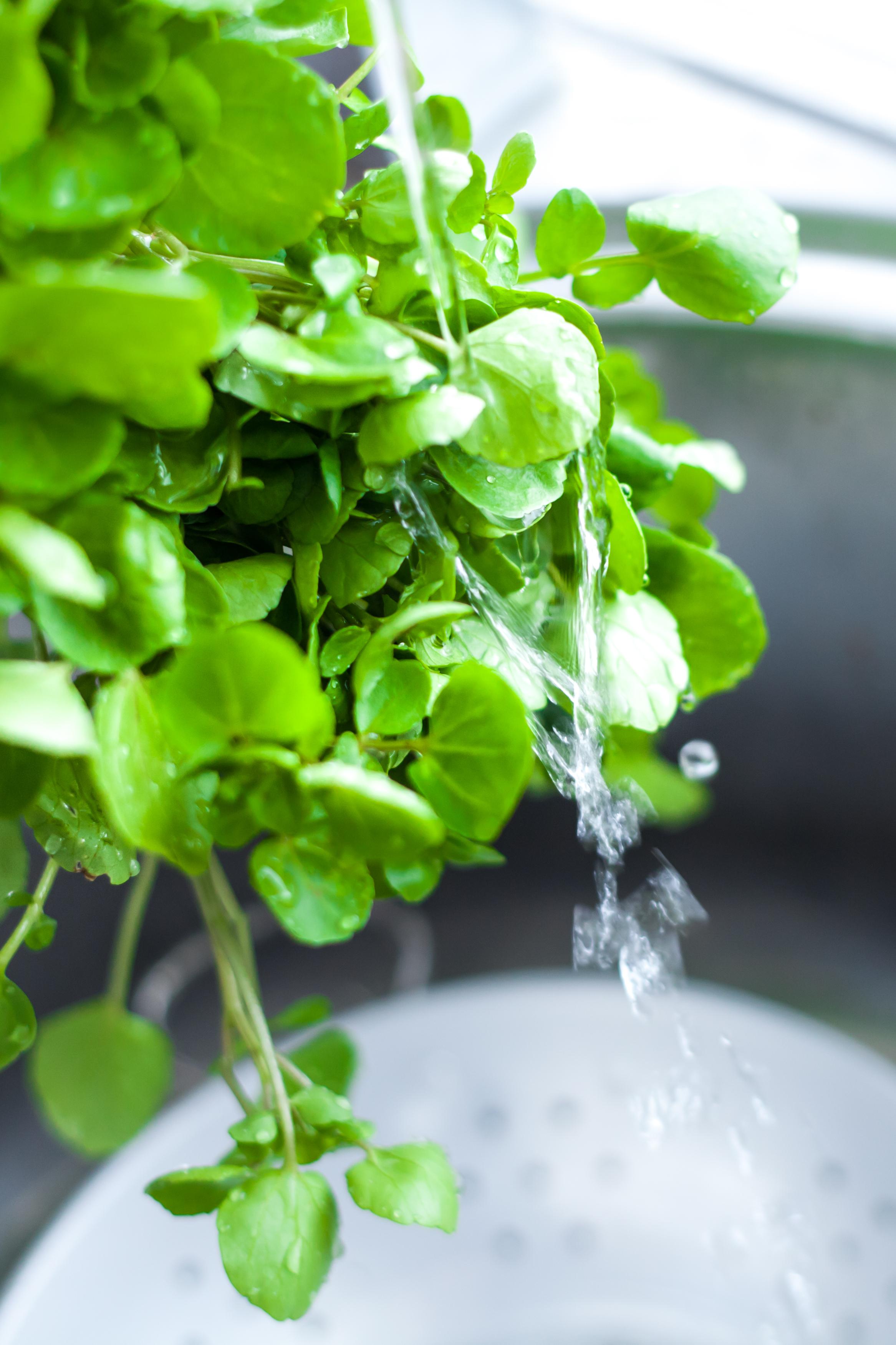 Watercress rinced in spring water.jpg