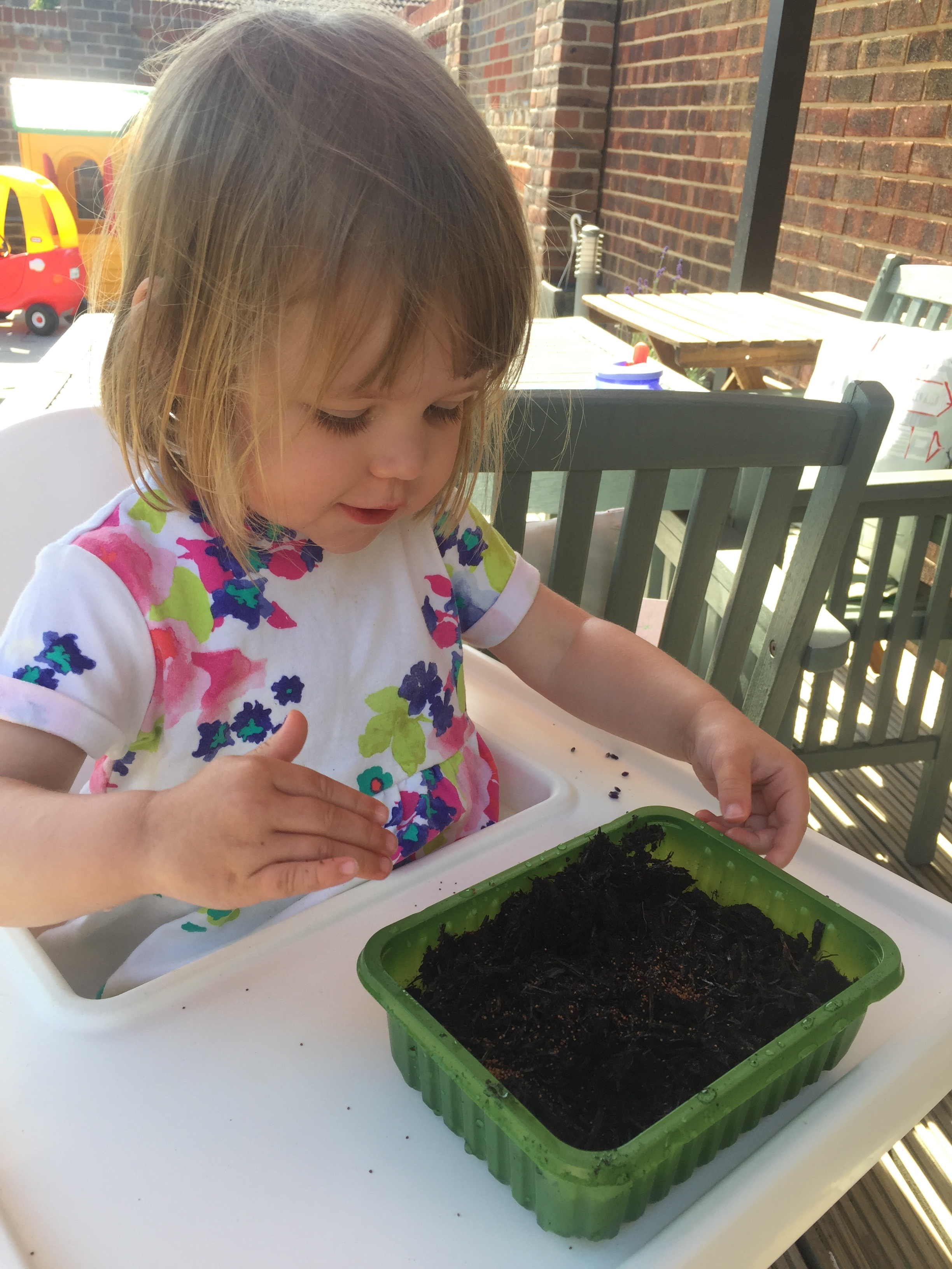 Runner up Millie Mary prepares her seed bed