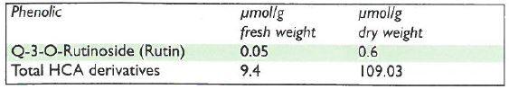phenolic.JPG