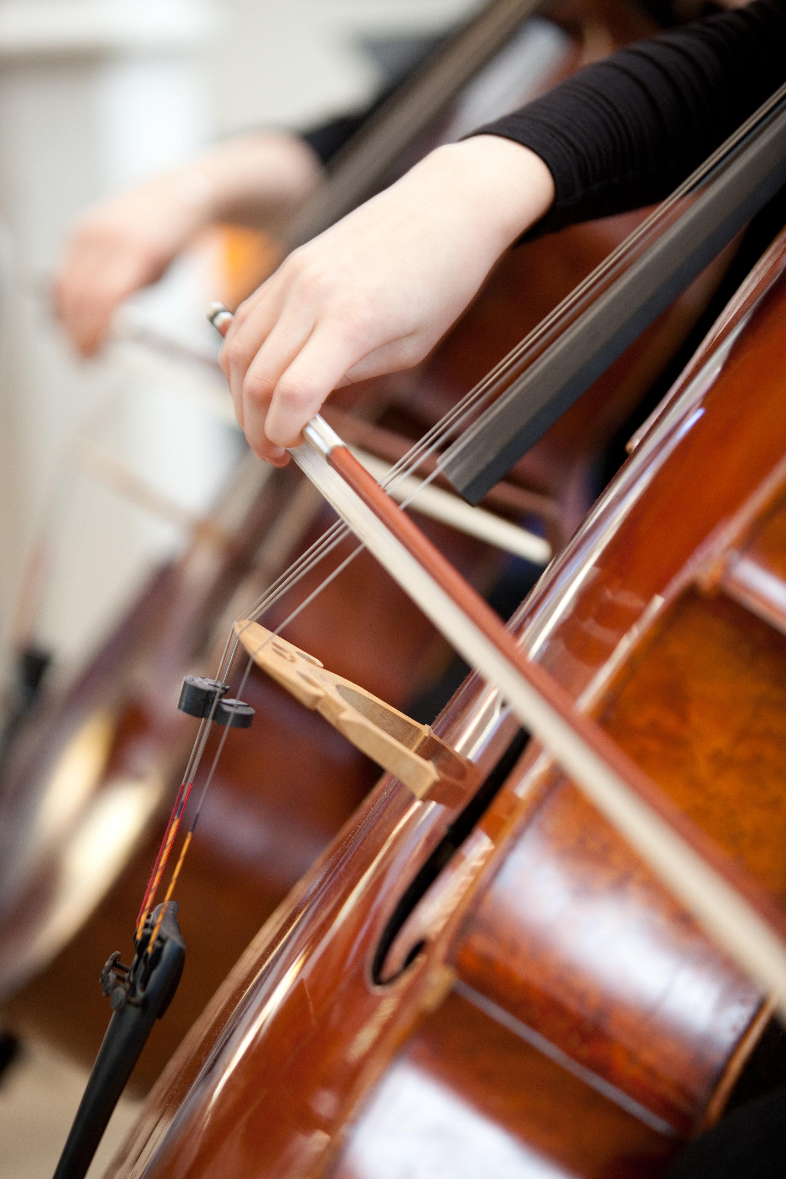 _MG_6061 cello.jpg