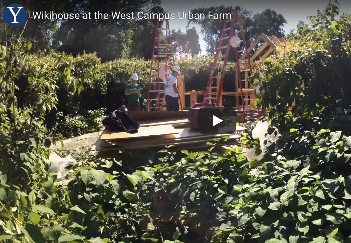 Something Wiki this way comes — to West Campus - Students from the Yale Forestry & Environmental Studies and staff members collaborated to create a Wikihouse at the Yale West Campus Urban Farm…