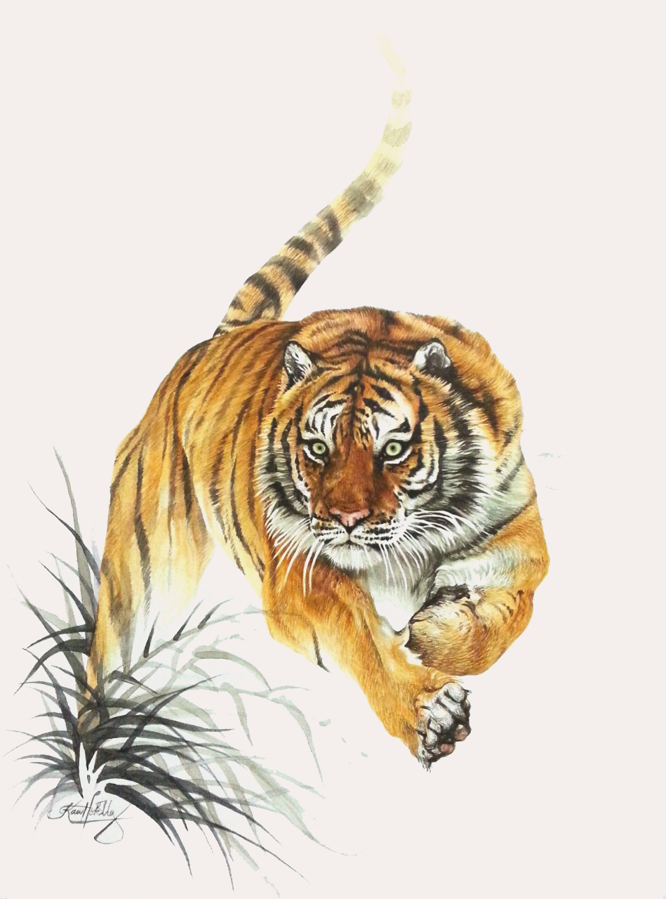 Illustration by  Miko Kaw Hok Uy