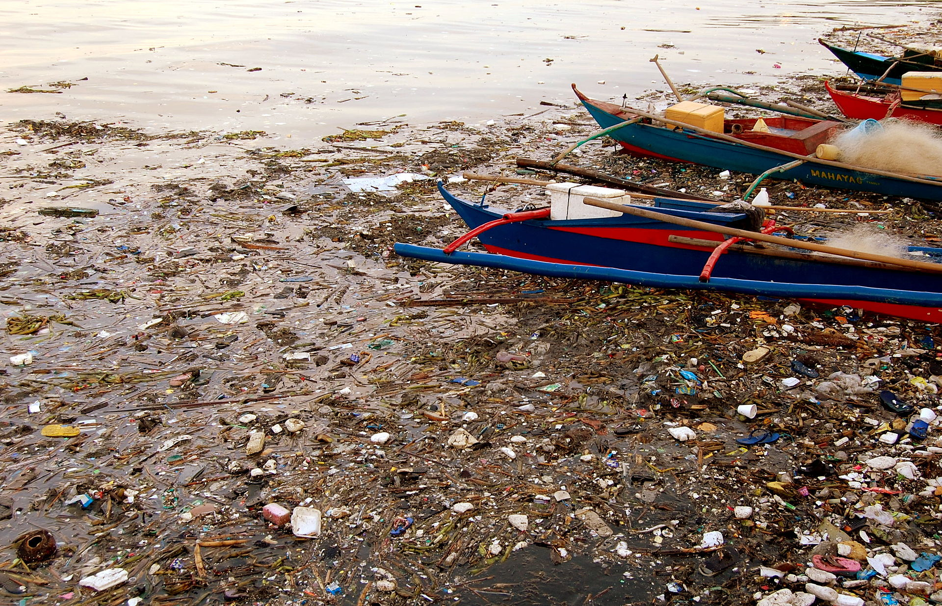 Manila Bay is the catchment area of the Pasig and Pampanga River Basins whose organic pollution load from the ever growing urban centers have also earned it the distinction of being the biggest sewer in the world. Photo owned by  Shubert Ciencia .  CC BY-SA 2.0