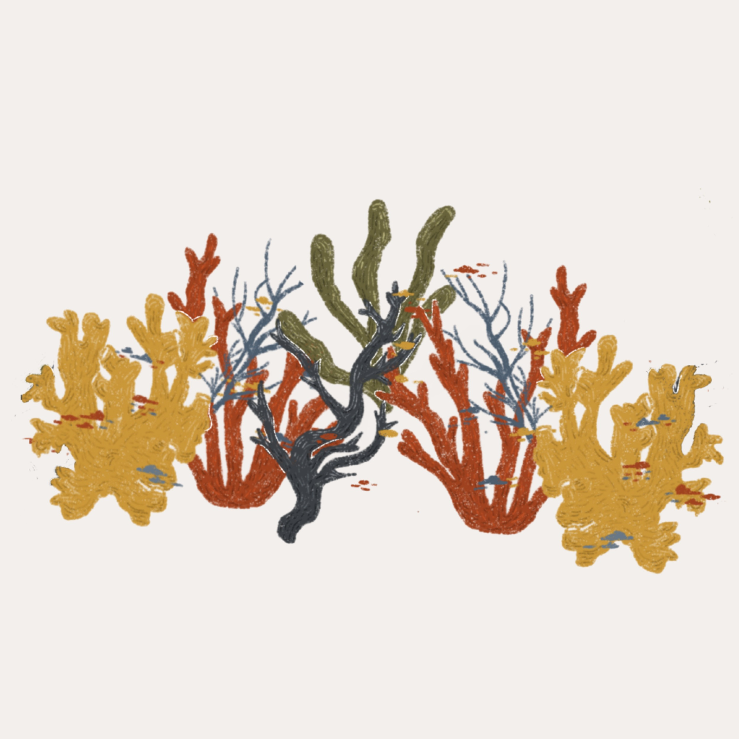 Corals Cover.jpg